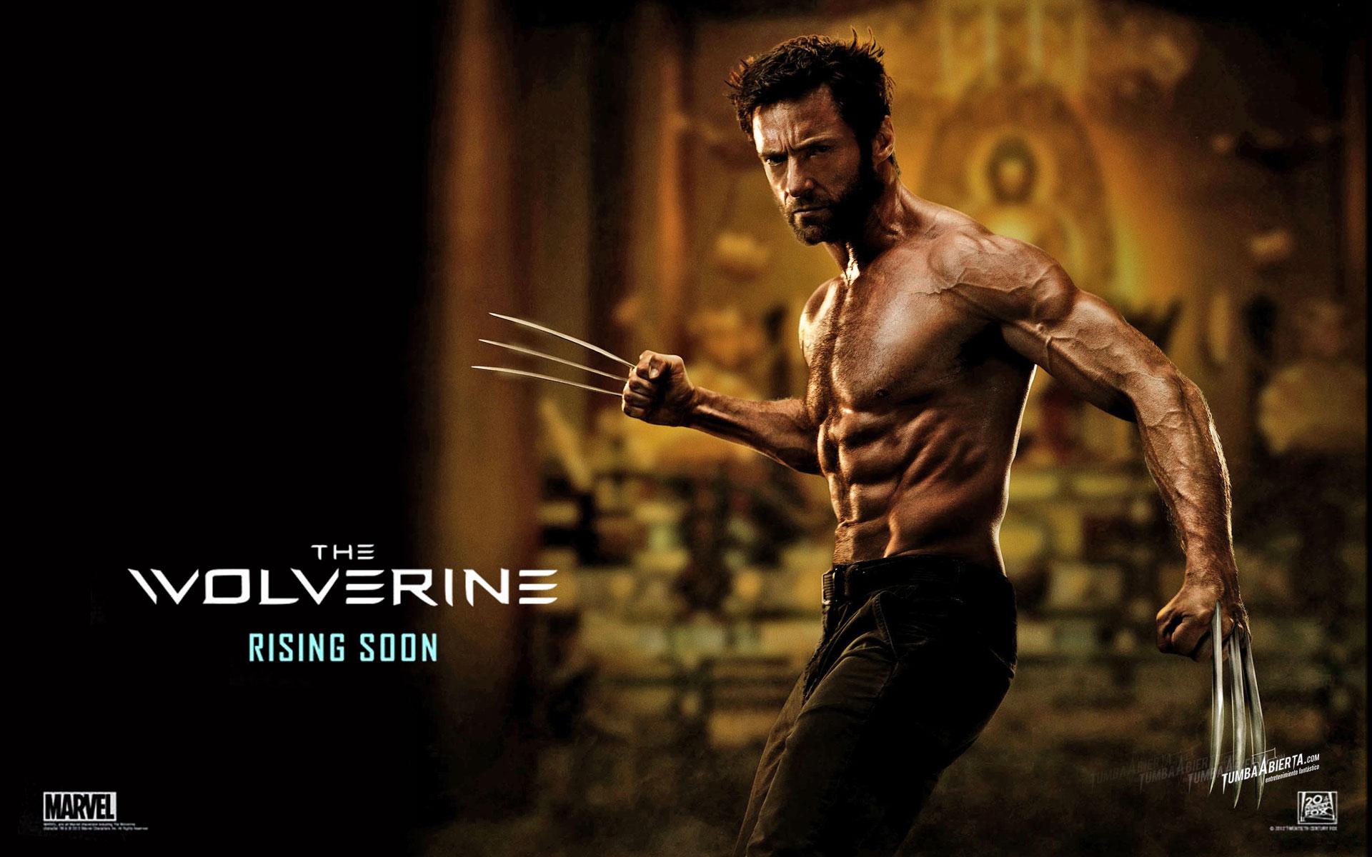 2013 Wolverine