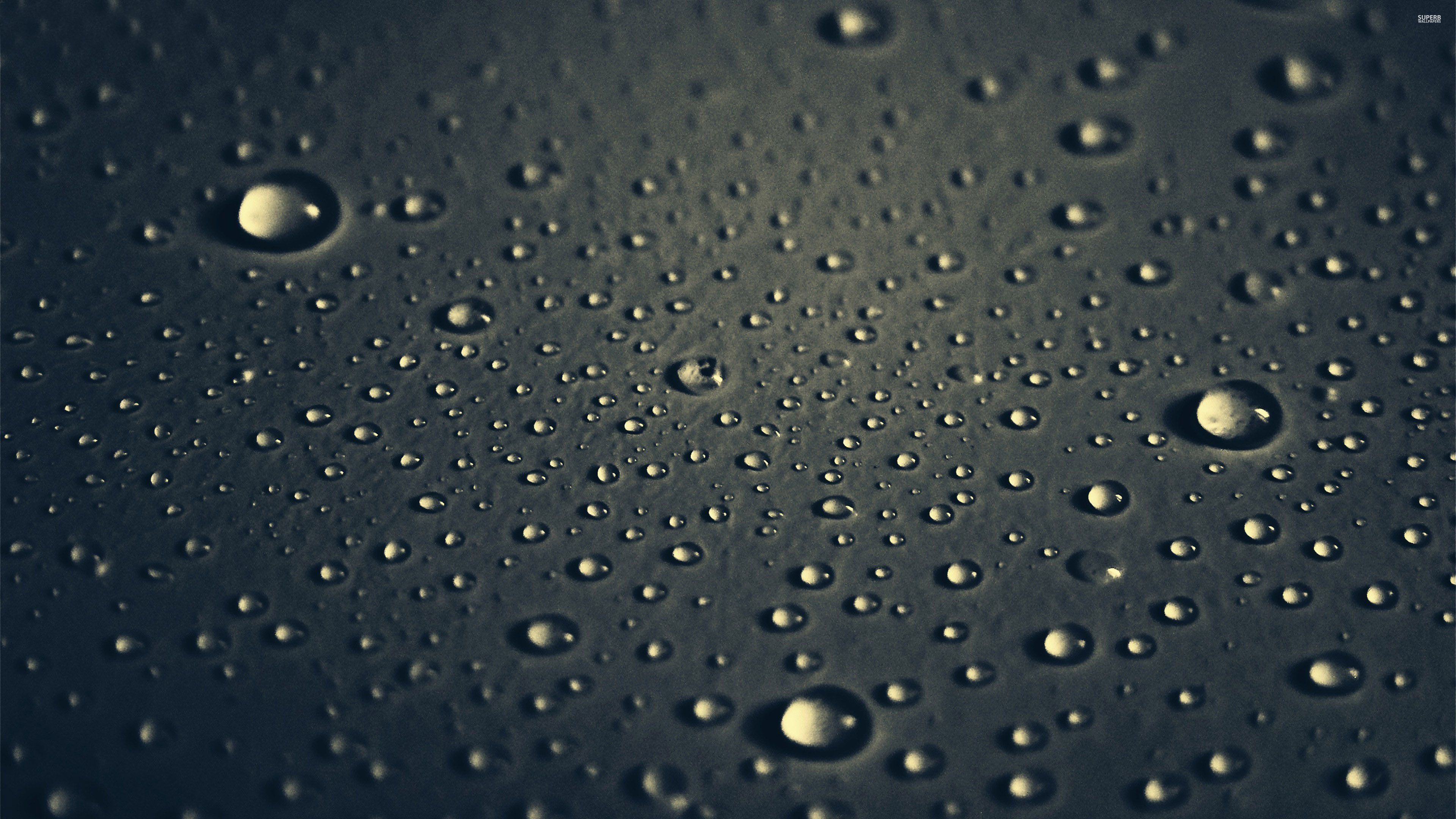Water drops wallpaper 3840x2160 jpg