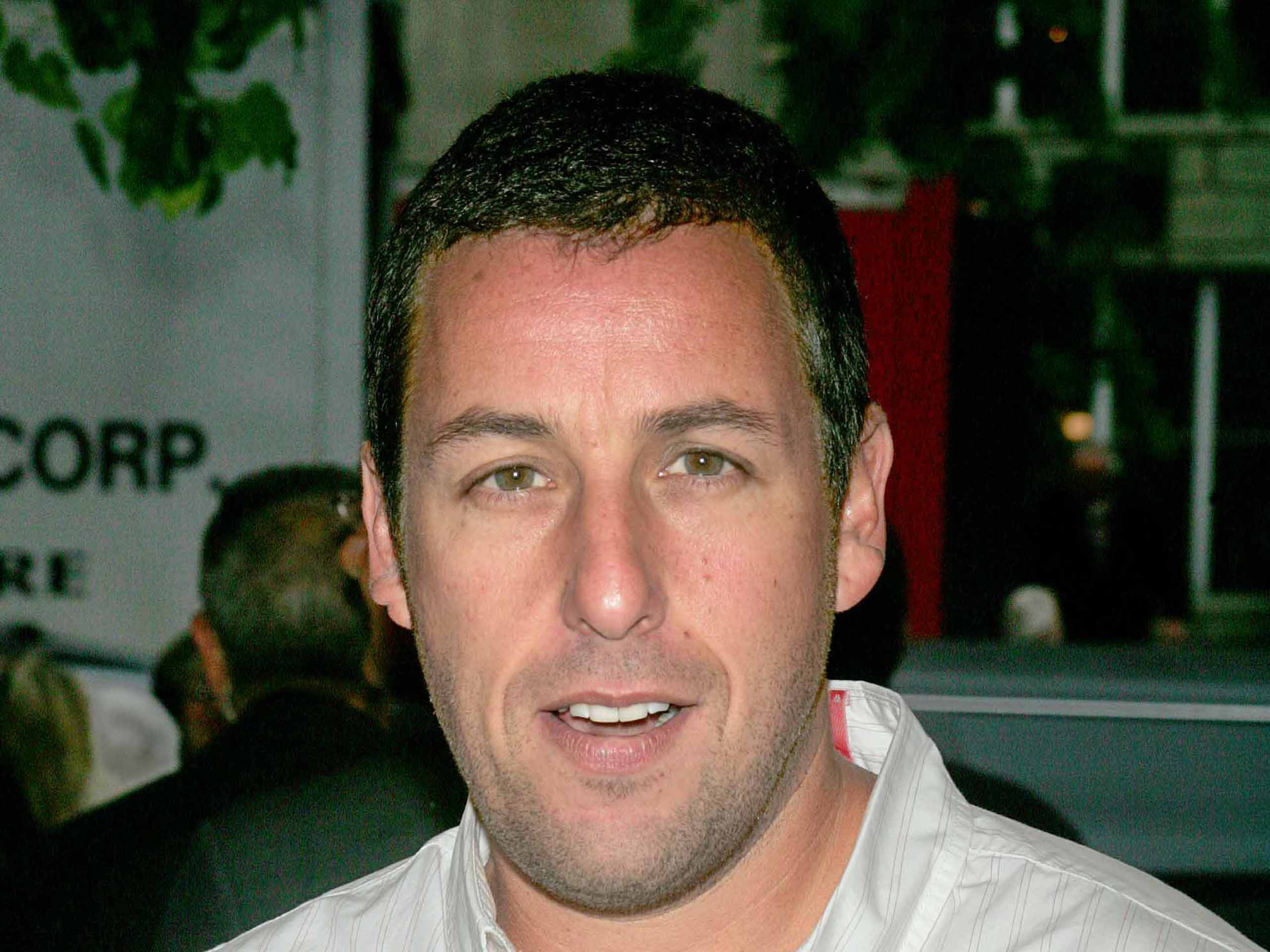 Download Convert View Source. Tagged on : Adam Sandler Wallpaper