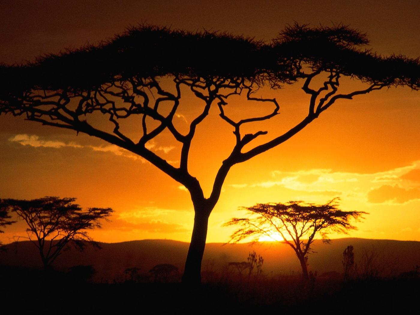 Tanzanian Sunset, Africa desktop wallpaper
