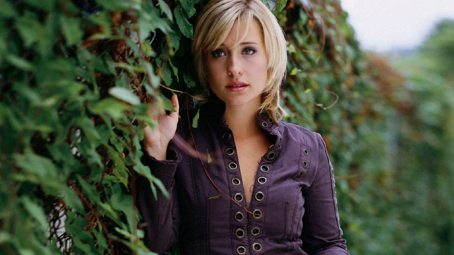 ... allison-mack-wallpapers-free ...