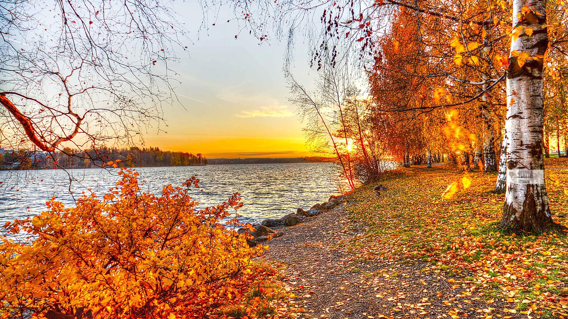 Amazing Autumn Landscape Wallpaper