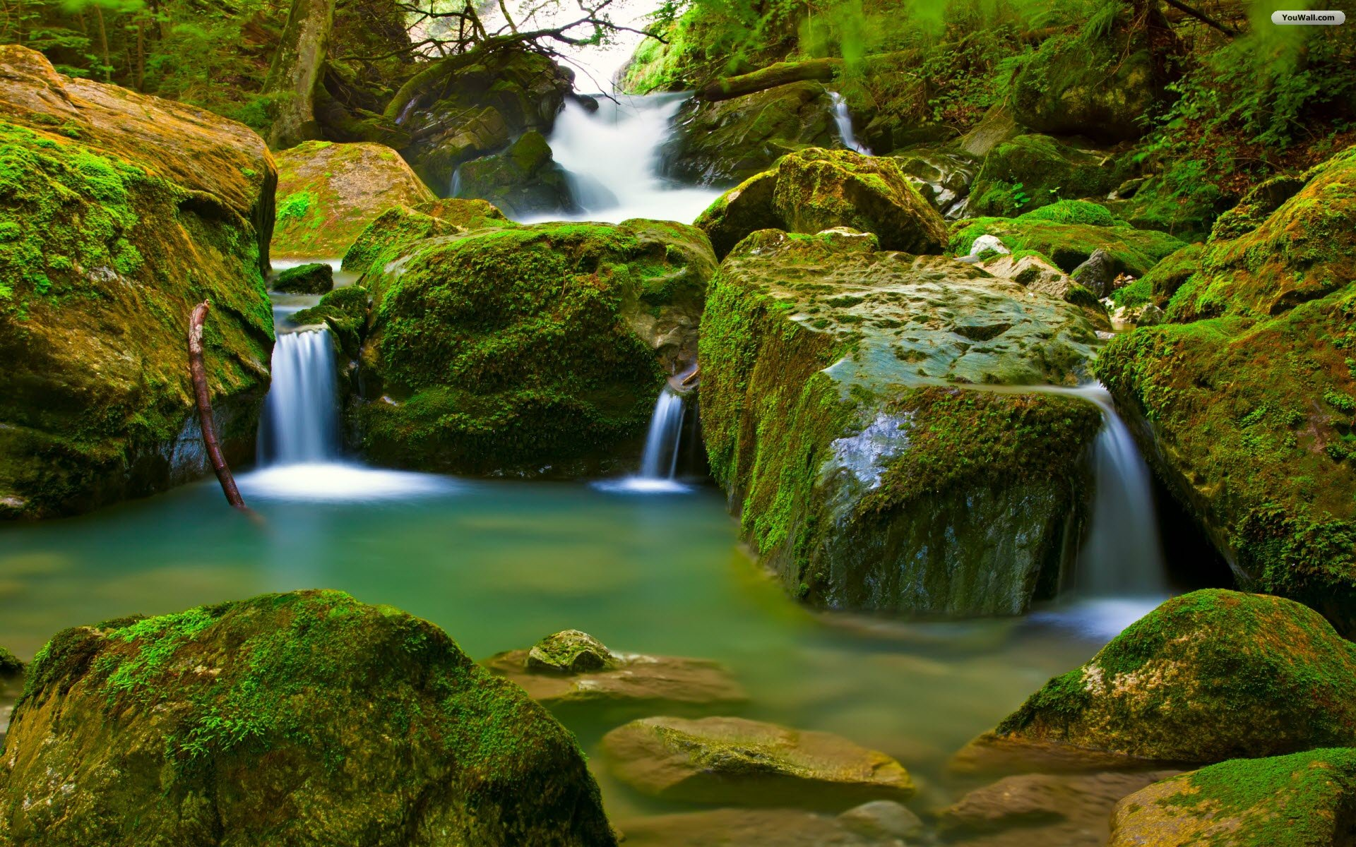 Fashionable Rainforest Waterfall Desktop Background Hd Wallpaper