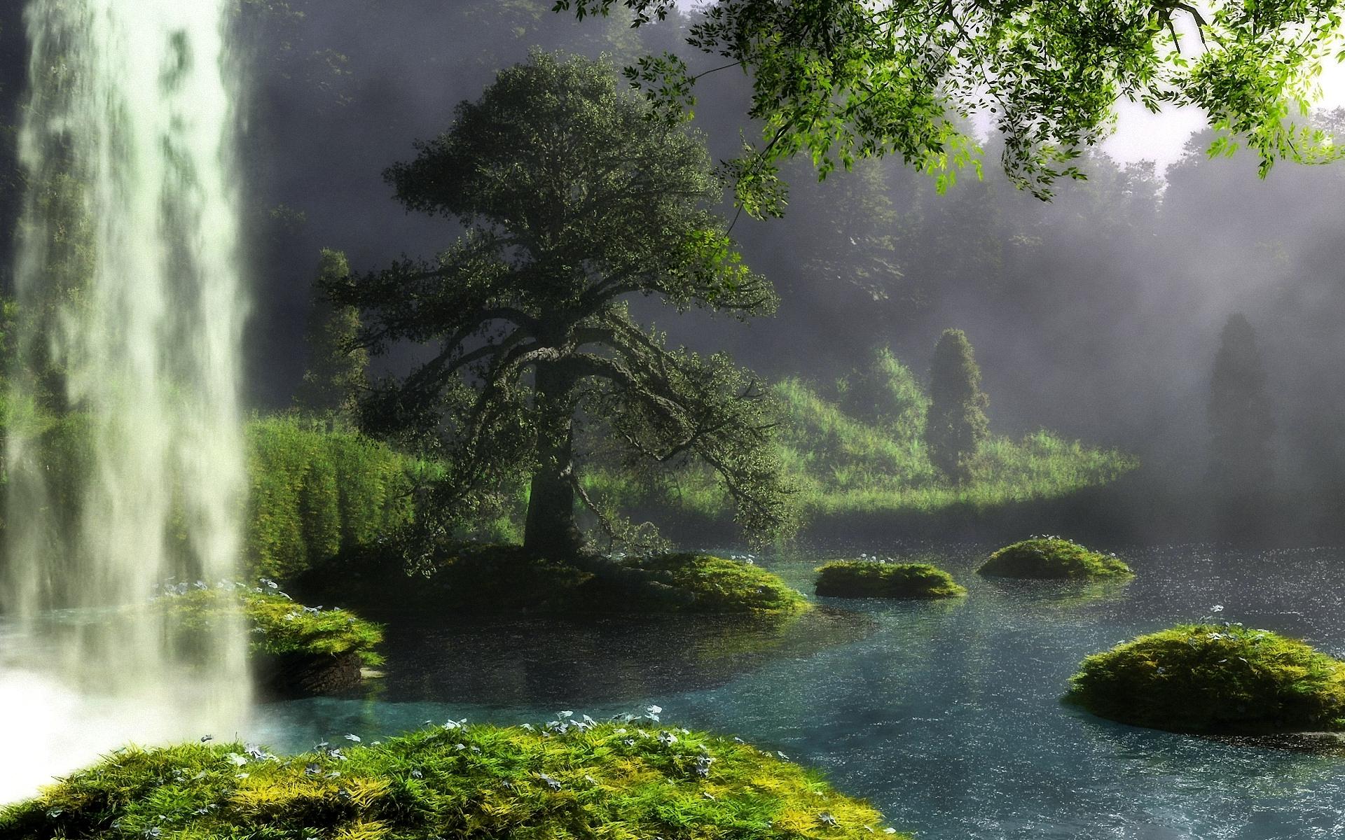 Forest Waterfall Wallpaper