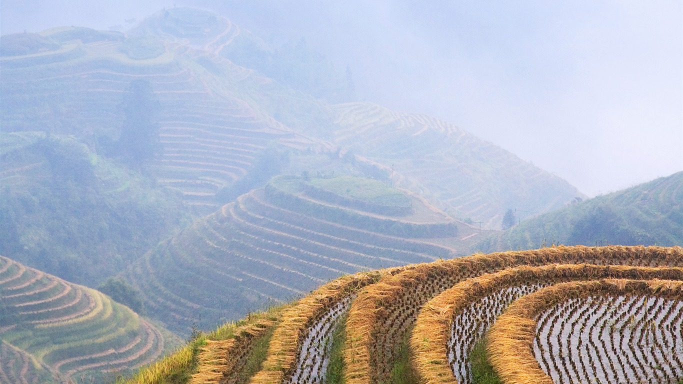 Amazing Harvest Pictures