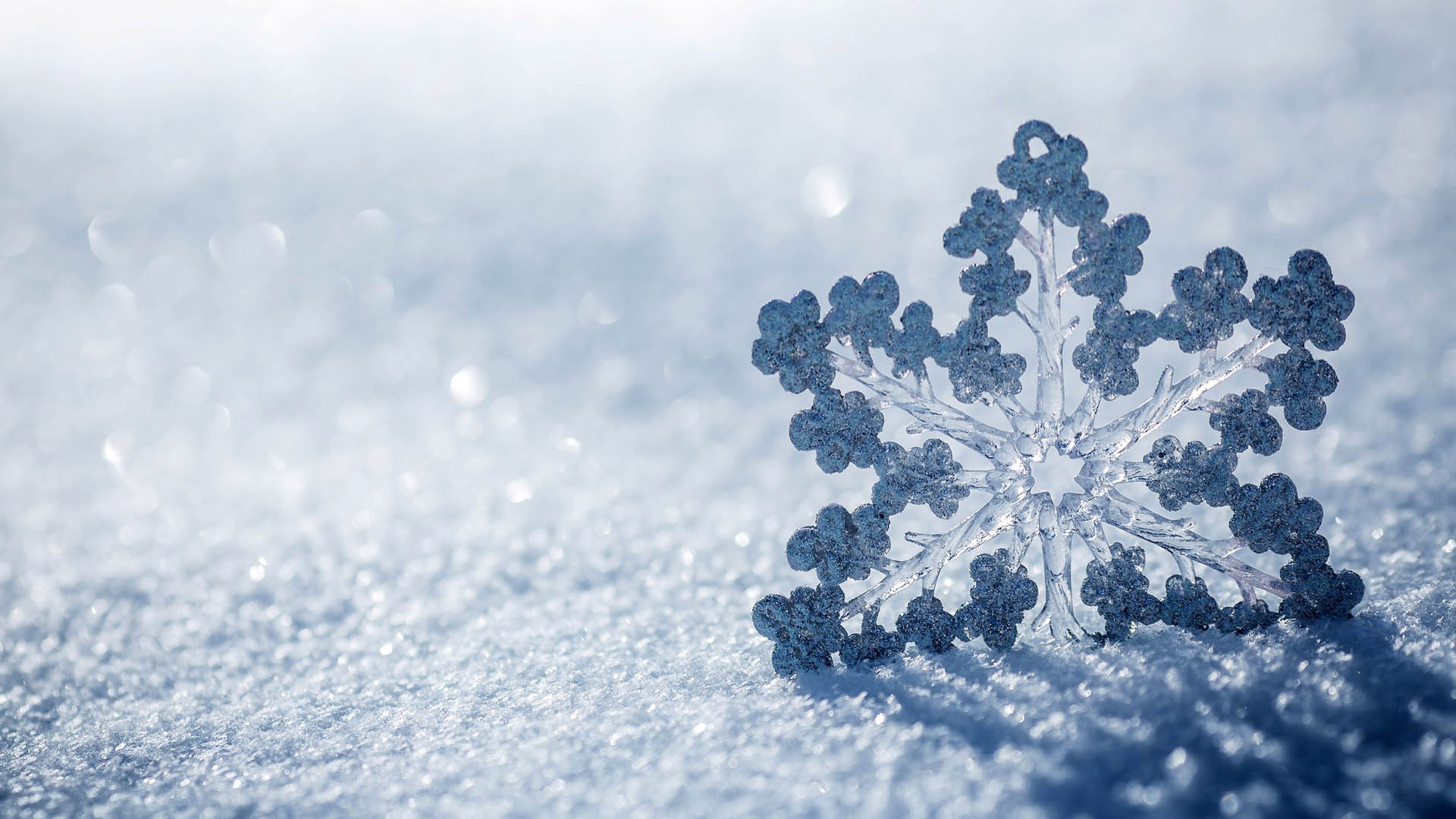 Amazing Snowflake Background