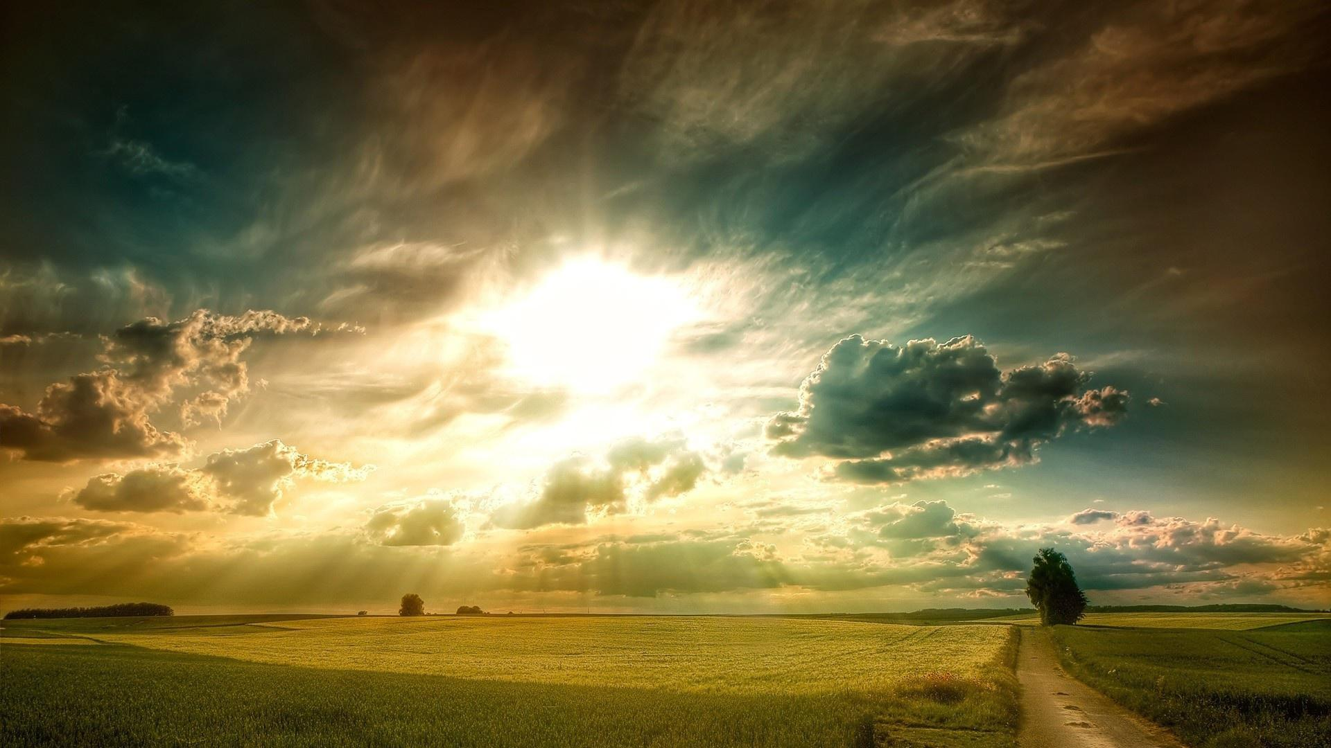 Amazing sun rays over wheat fields HQ WALLPAPER - (#103839)