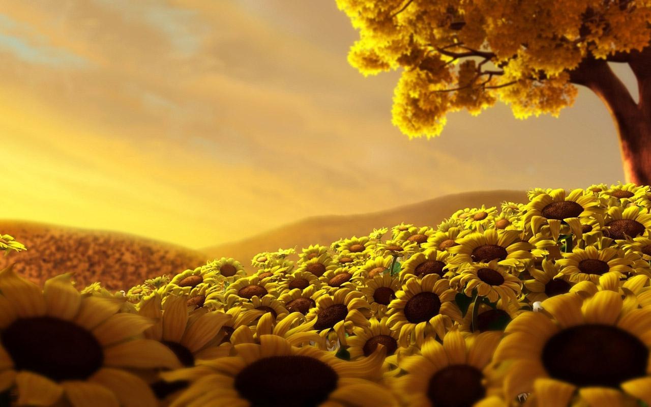 Sun-Wallpaper-59