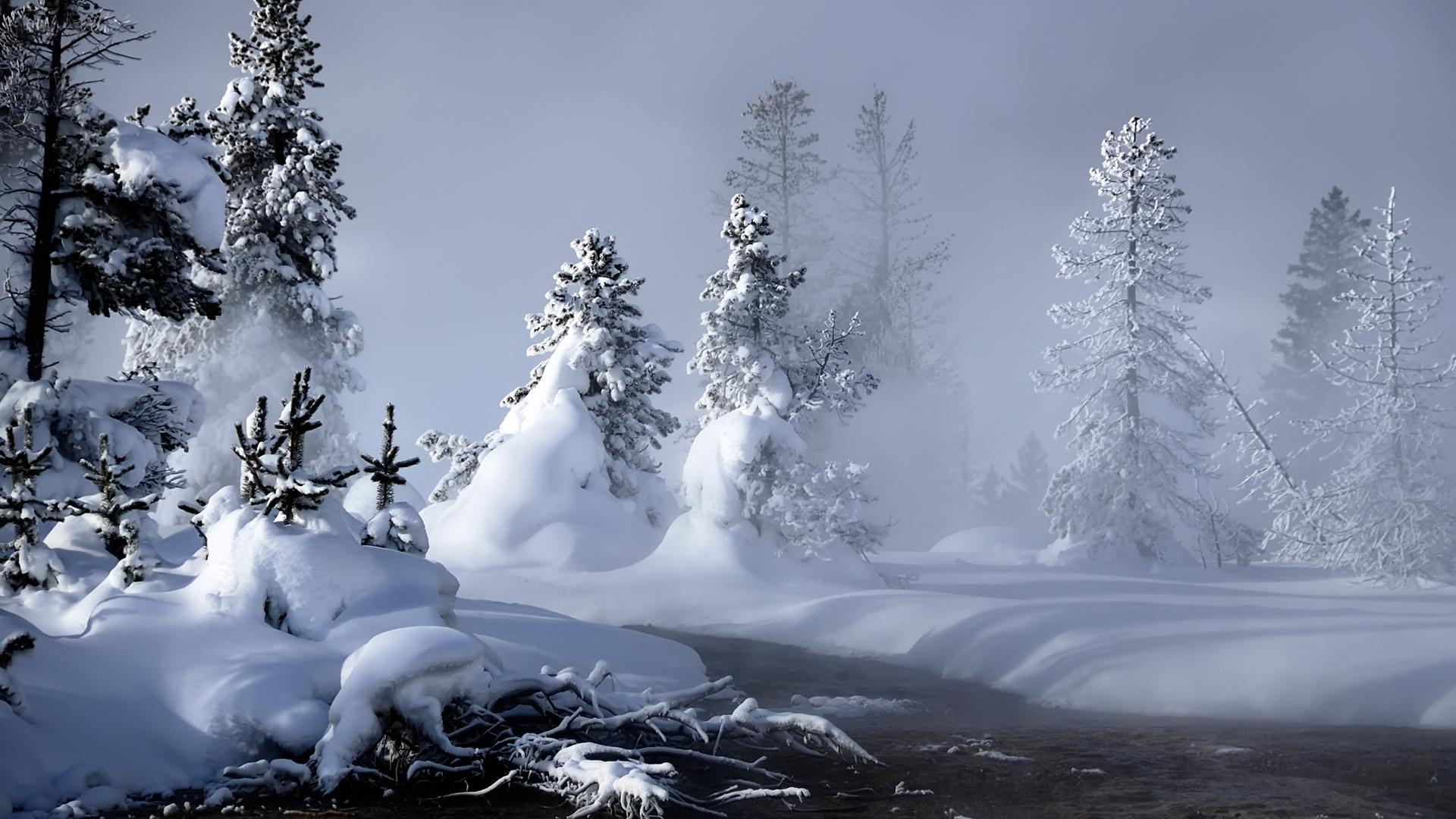 Amazing Winter Season Wallpaper 15646