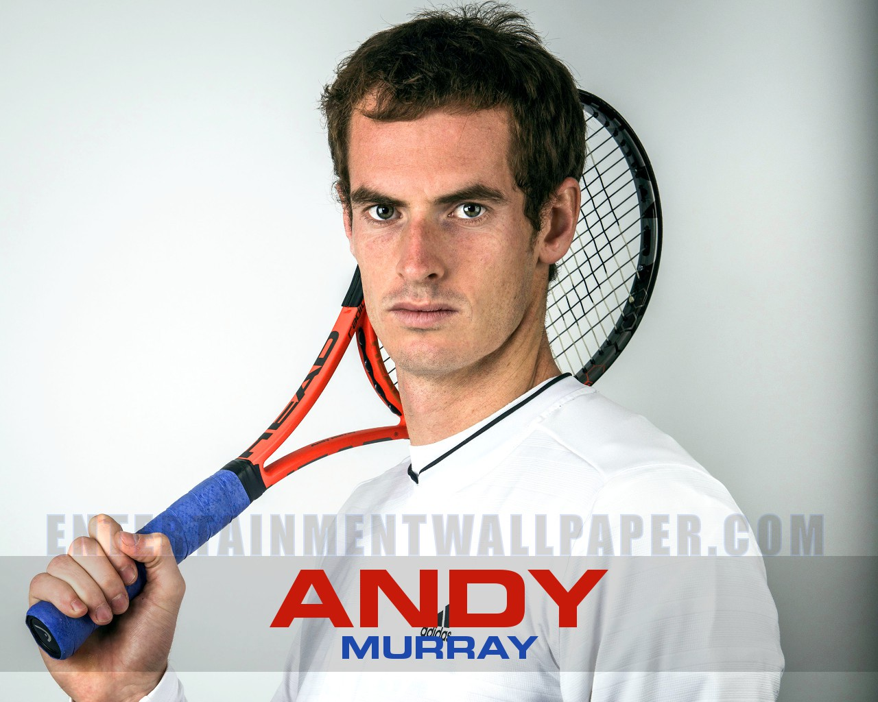 Andy Murray Wallpaper #232083 - Resolution 1280x1024 px