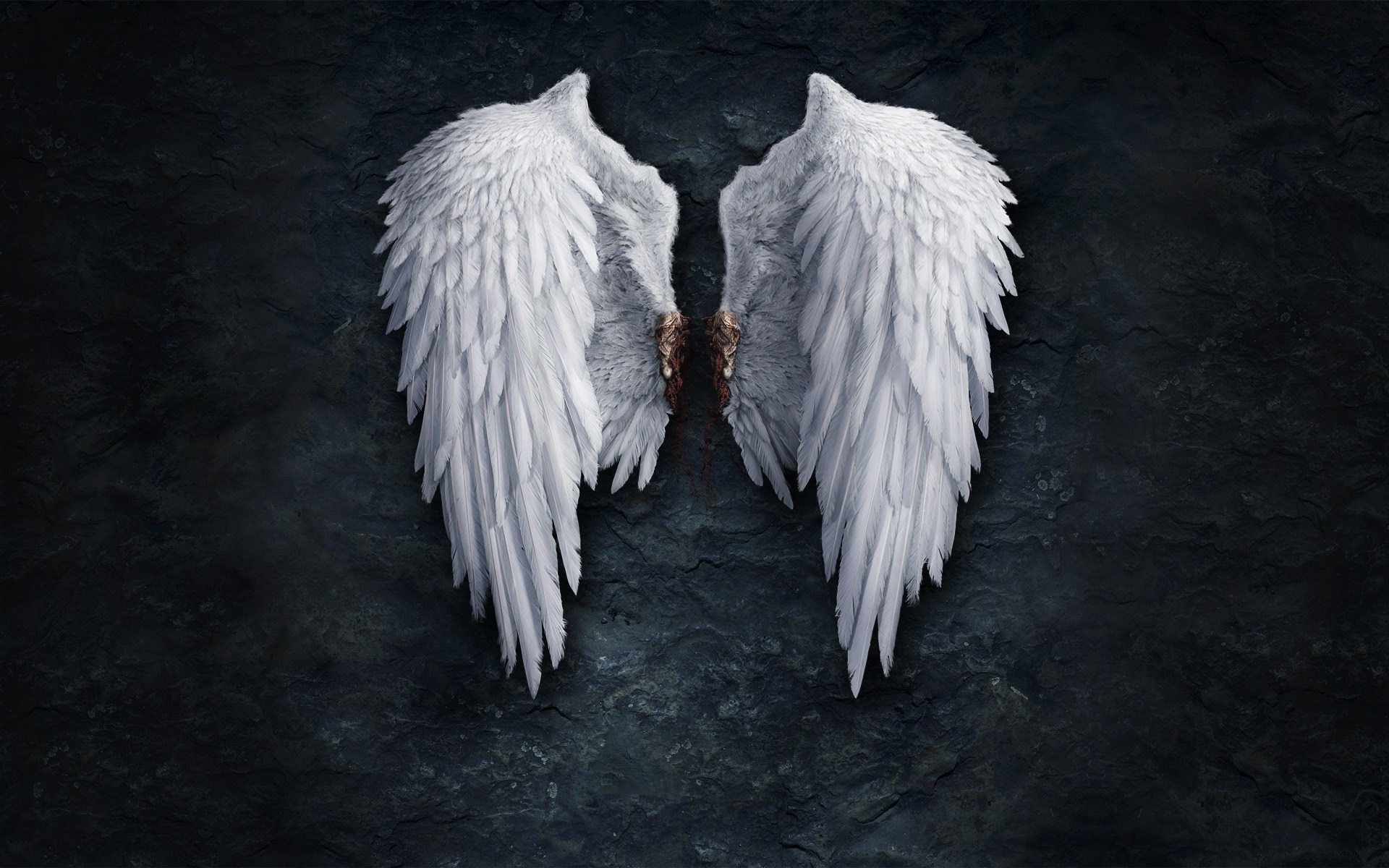 Angel Wings Creative