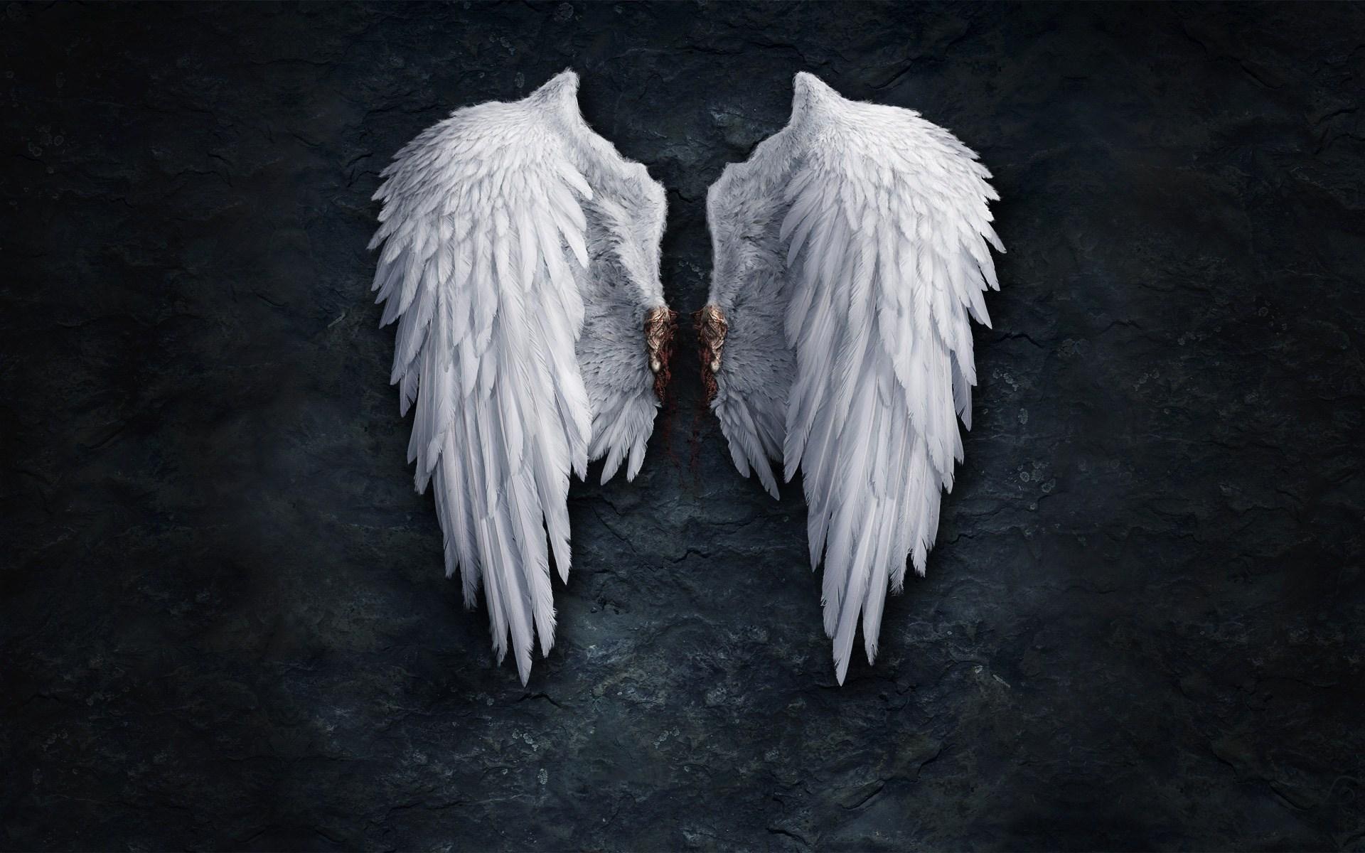 Angel Wings Creative