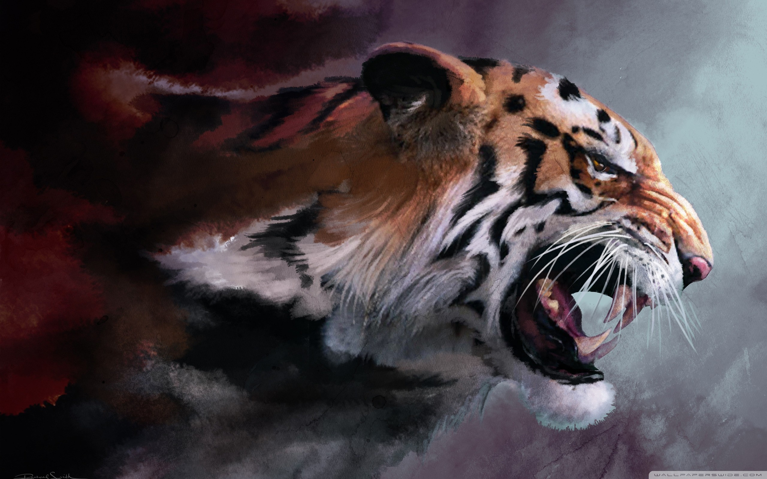 Angry Tiger Wallpaper 2560x1600 82369