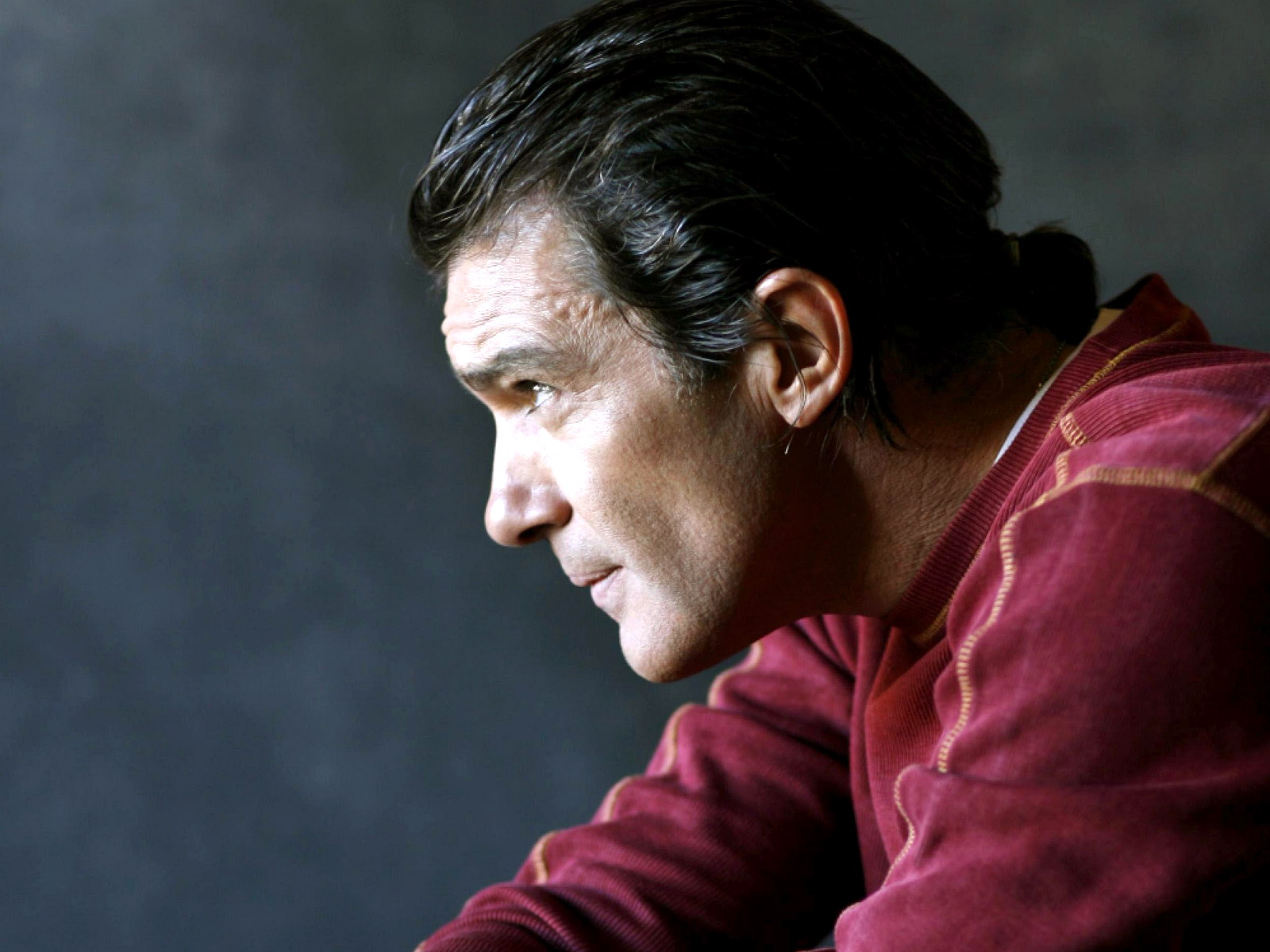 Download Antonio Banderas 42447