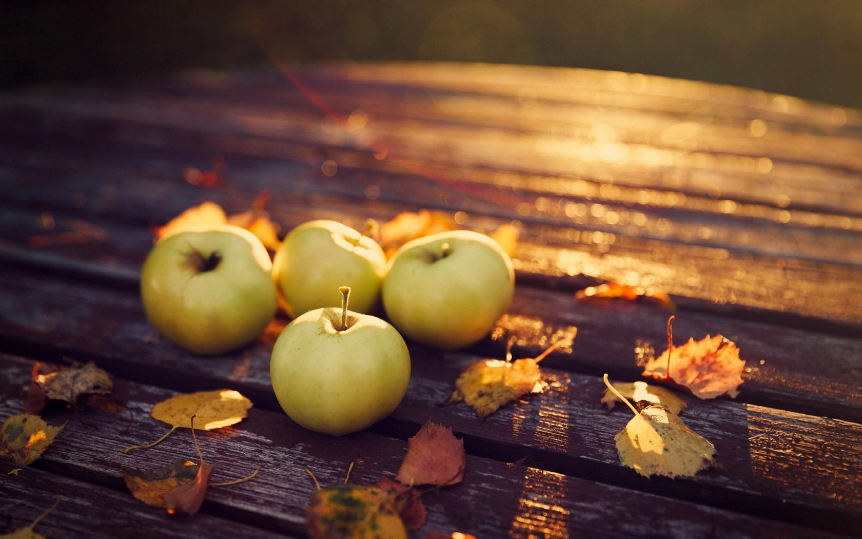 Apples Leaves Autumn Evening