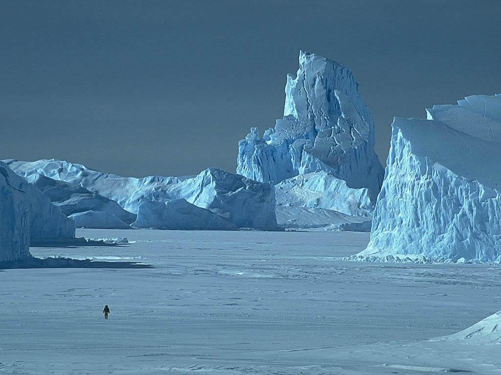Arctic Arctic ...