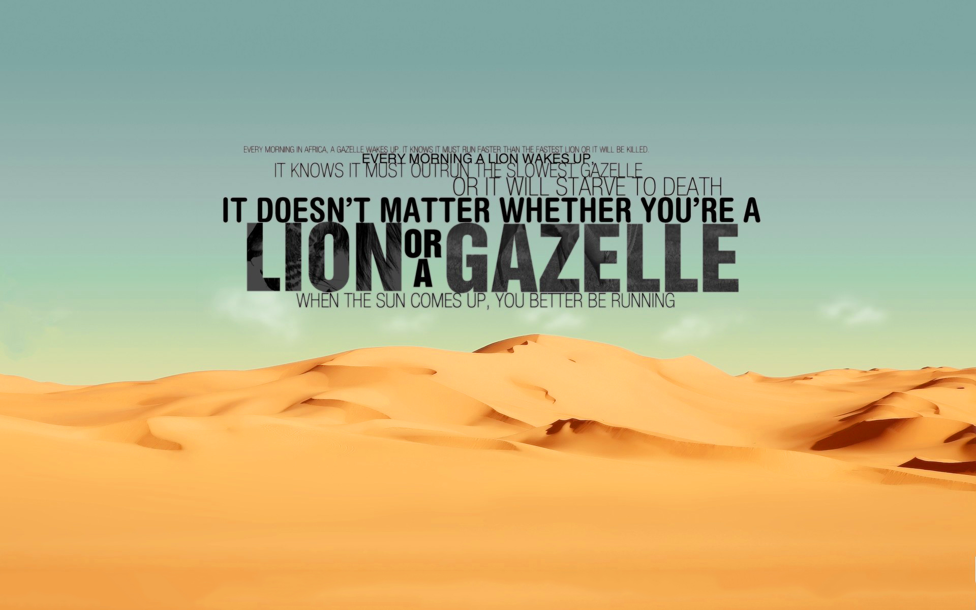 Are you lion or gazelle