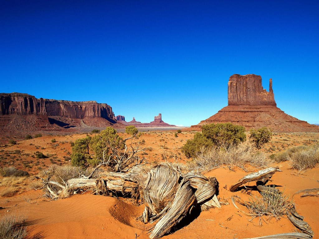 Are you searching for a bustling city or silent tranquil mountains? Do you prefer a warn dersert climate or snowy peaks? In Arizona you can choose either ...