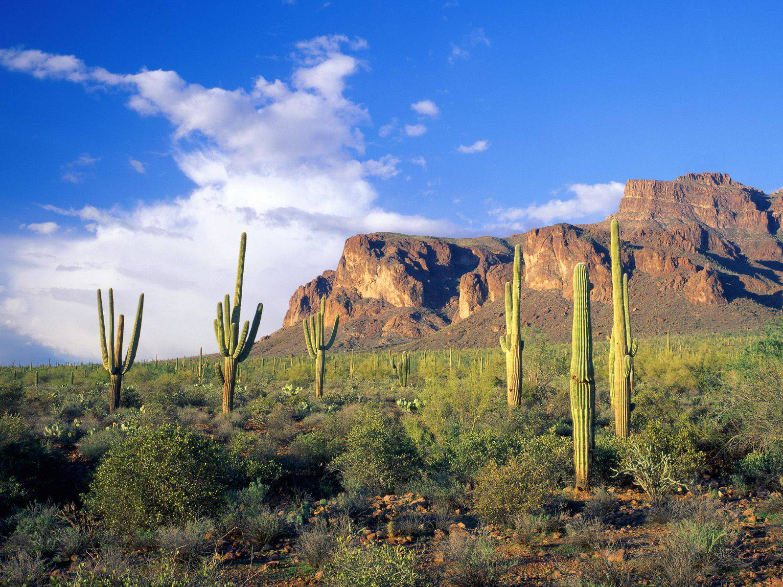 superstition mountains tonto national forest arizona wallpaper