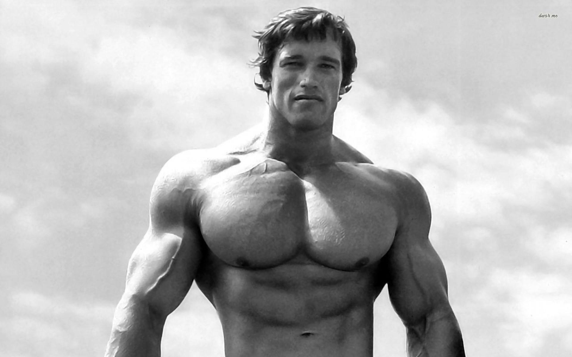 Fonds d'écran Arnold Schwarzenegger PC et Tablettes (iPad, etc...)