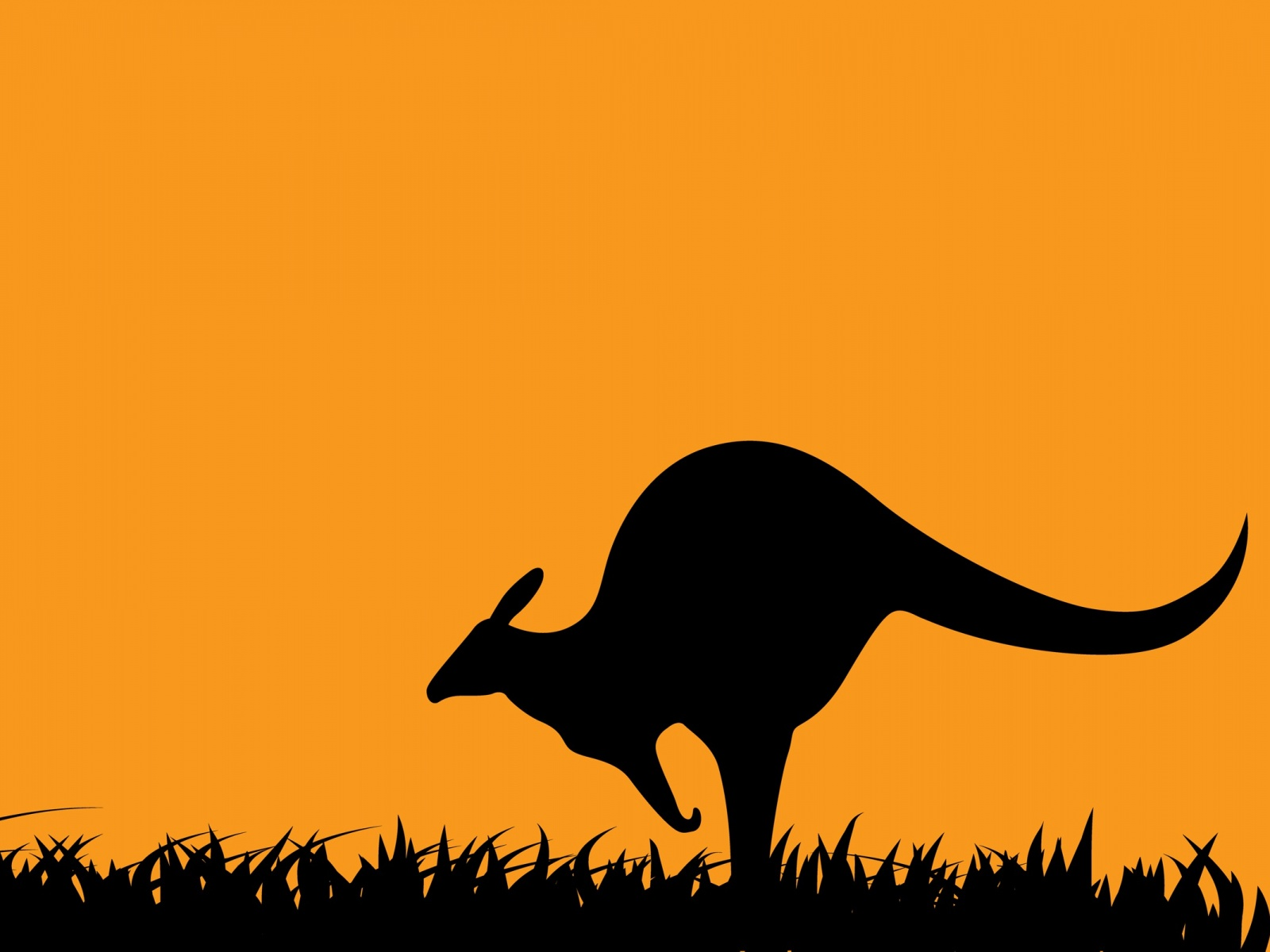 Art Kangaroo Wallpaper in 1600x1200 Normal