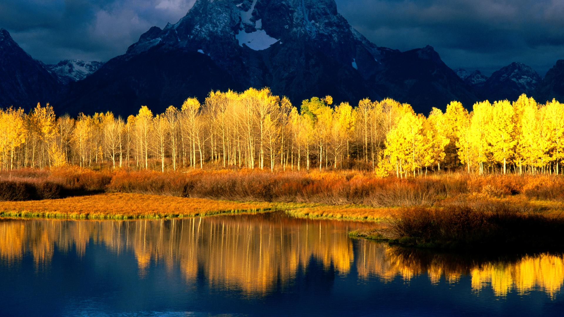 The Best & Most Experienced Licensed Massage Professionals for Aspen/Snowmass