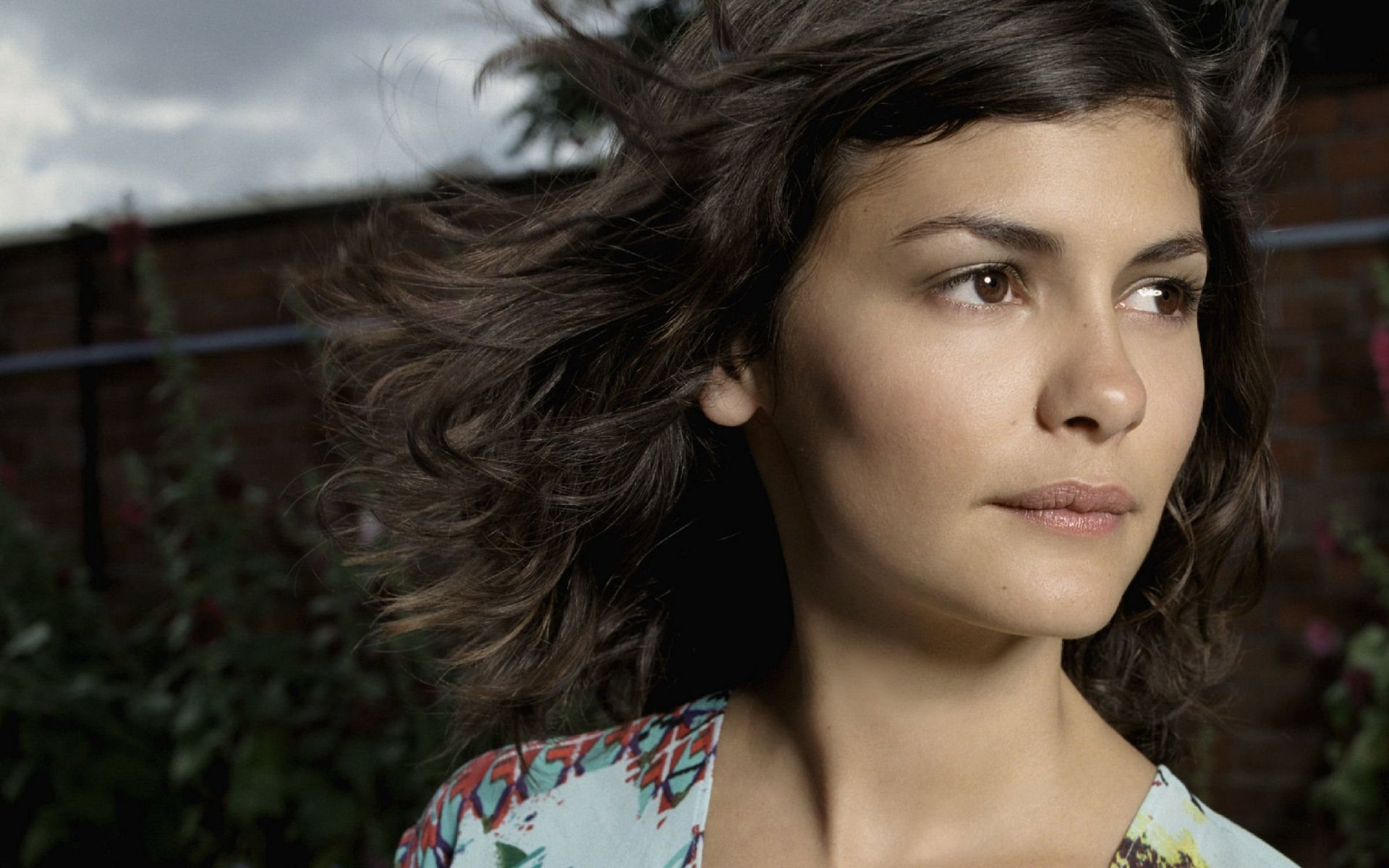 Audrey Tautou wallpaper hd