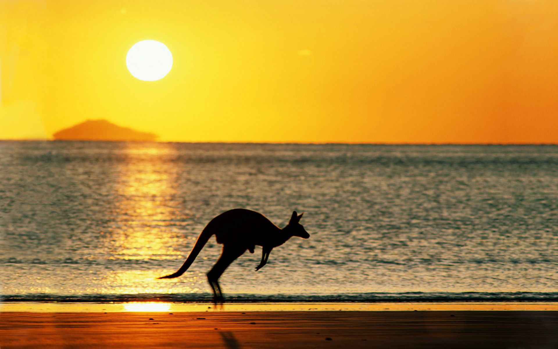 Australia Beach Wallpaper