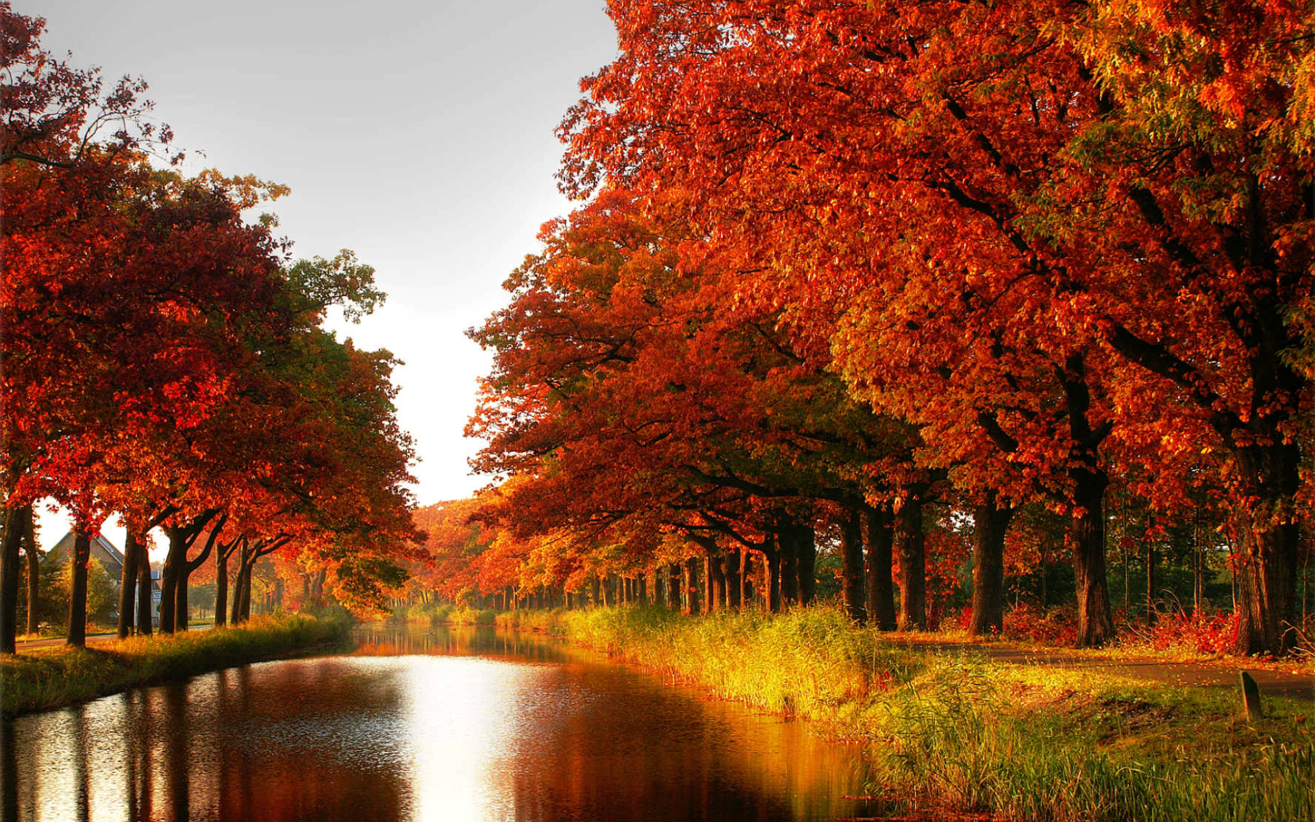 Colors Autumn Background 1 HD Wallpapers