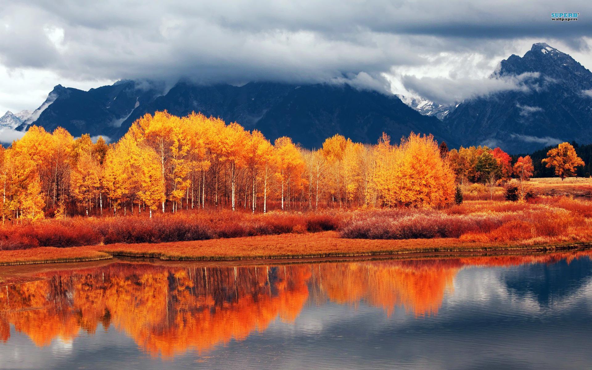 Autumn landscape wallpaper 1920x1200 jpg
