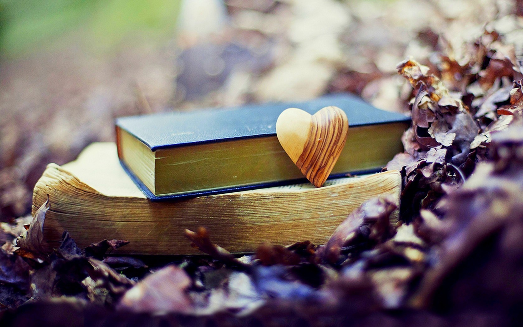 Autumn Leaves Books Heart Fall Love