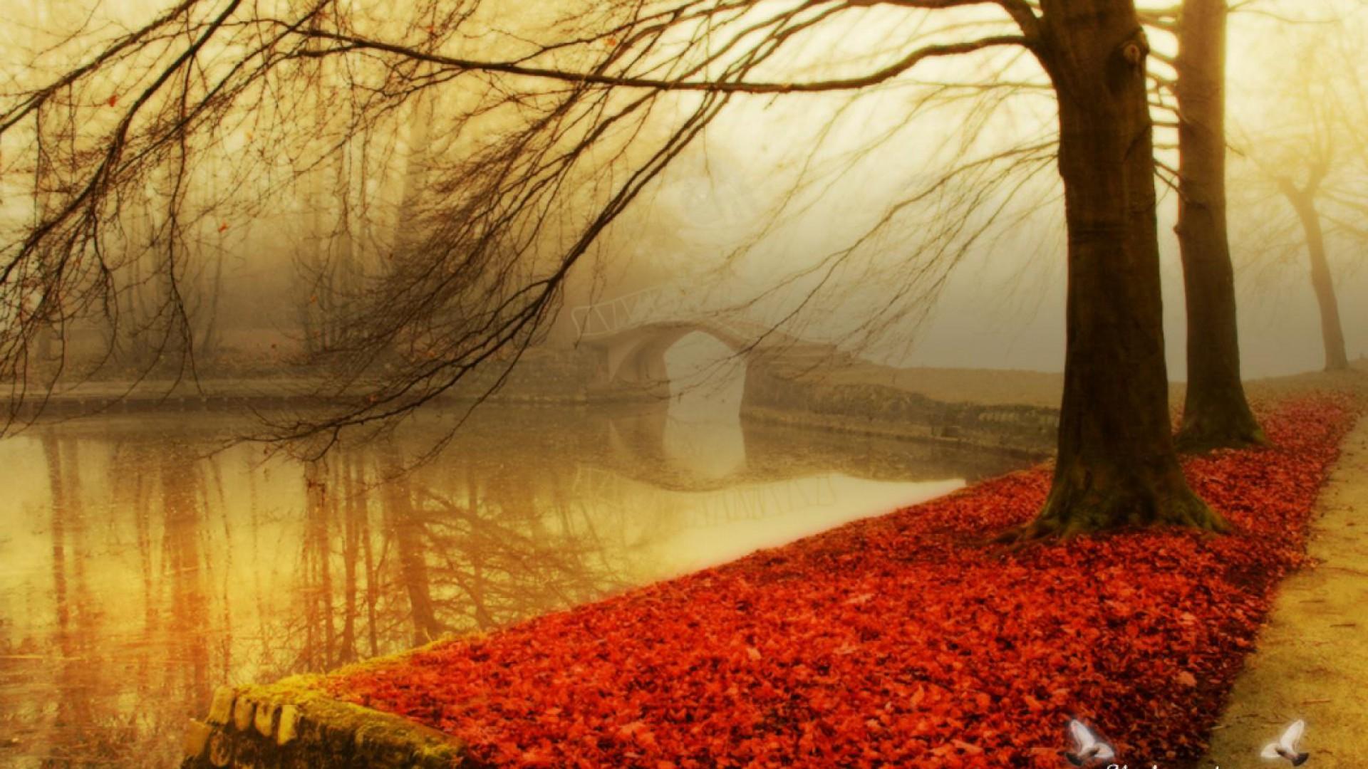 Abstract CIty Lake Hd Autumn Wallpapers Autumn Wallpaper