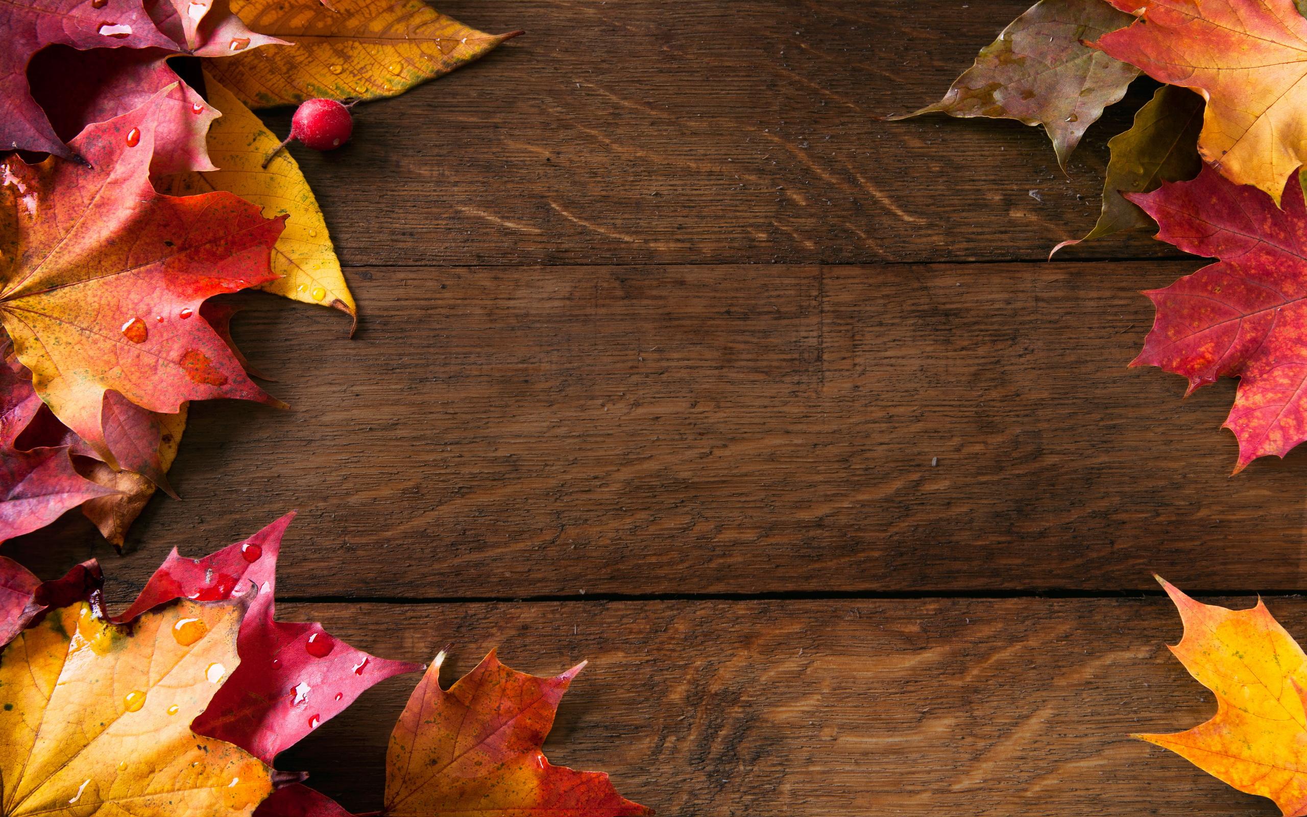 Abstract Autumn Frame Wallpapers HD Autumn Wallpaper