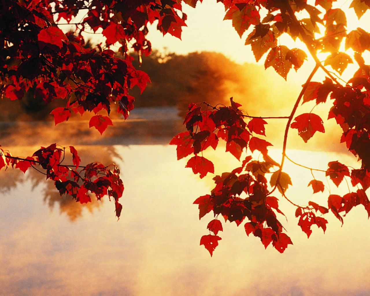 Autumn Wallpaper HD Wallpaper 10