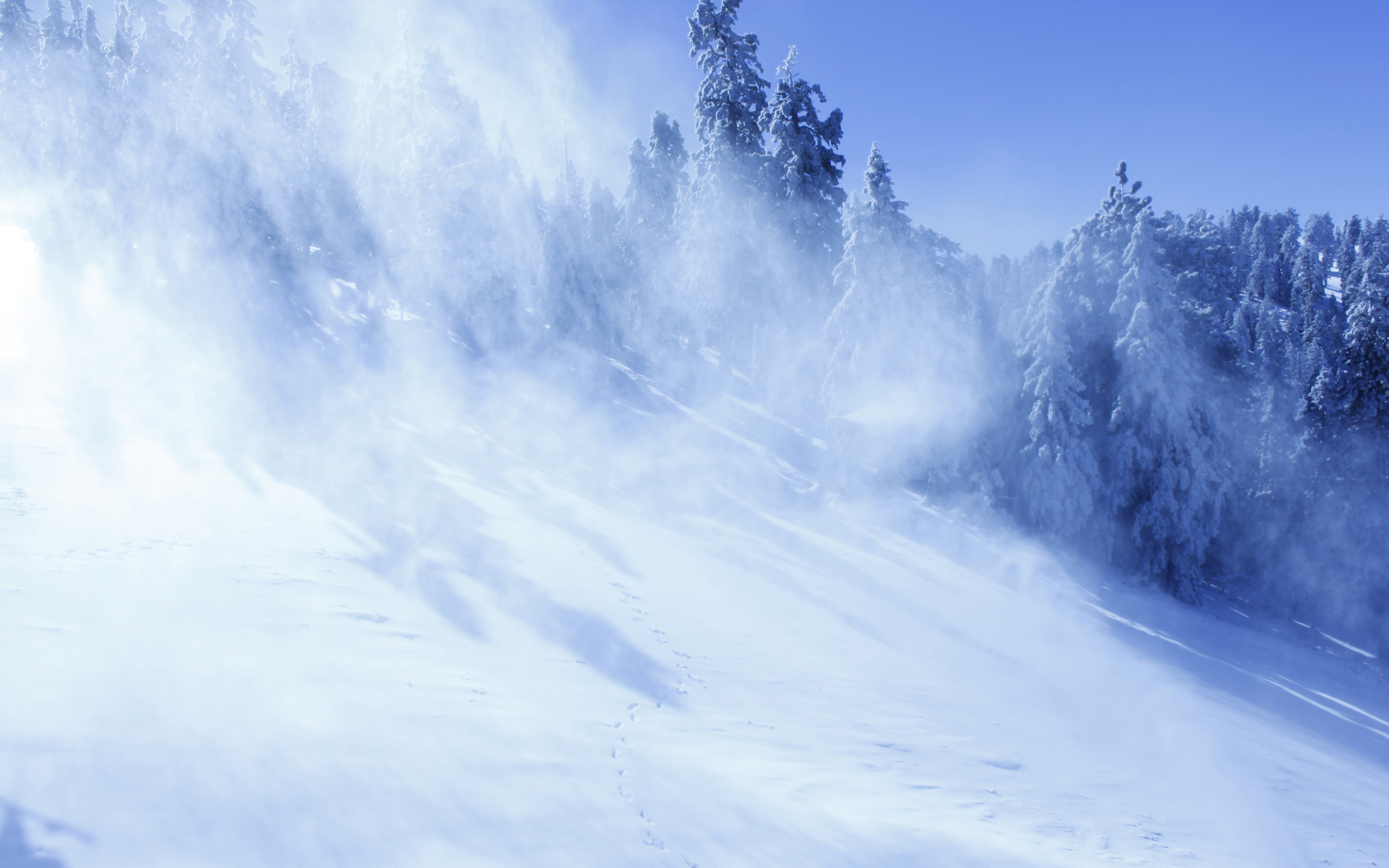 Avalanche Wallpaper