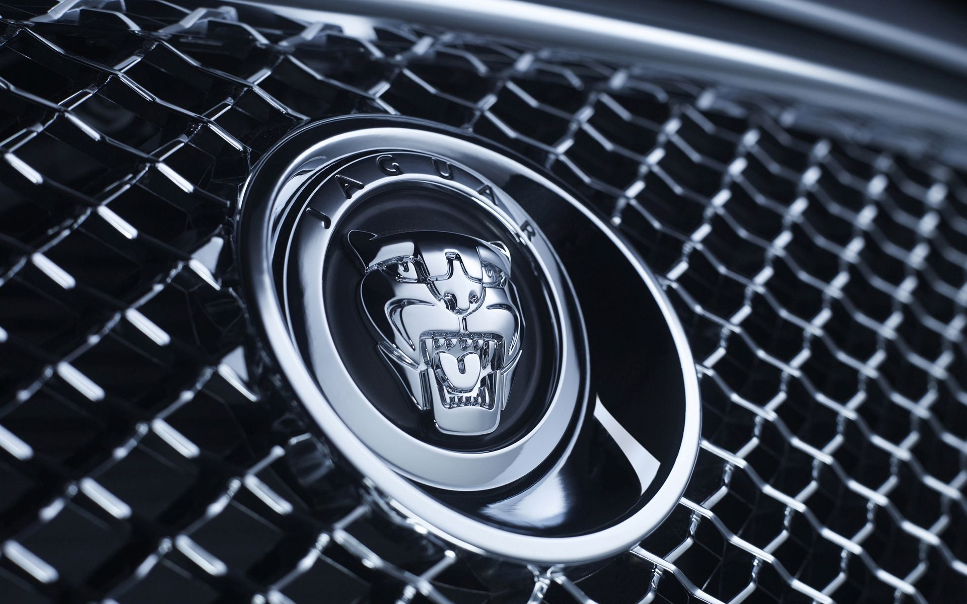 Awesome Cars Close Up Wallpaper