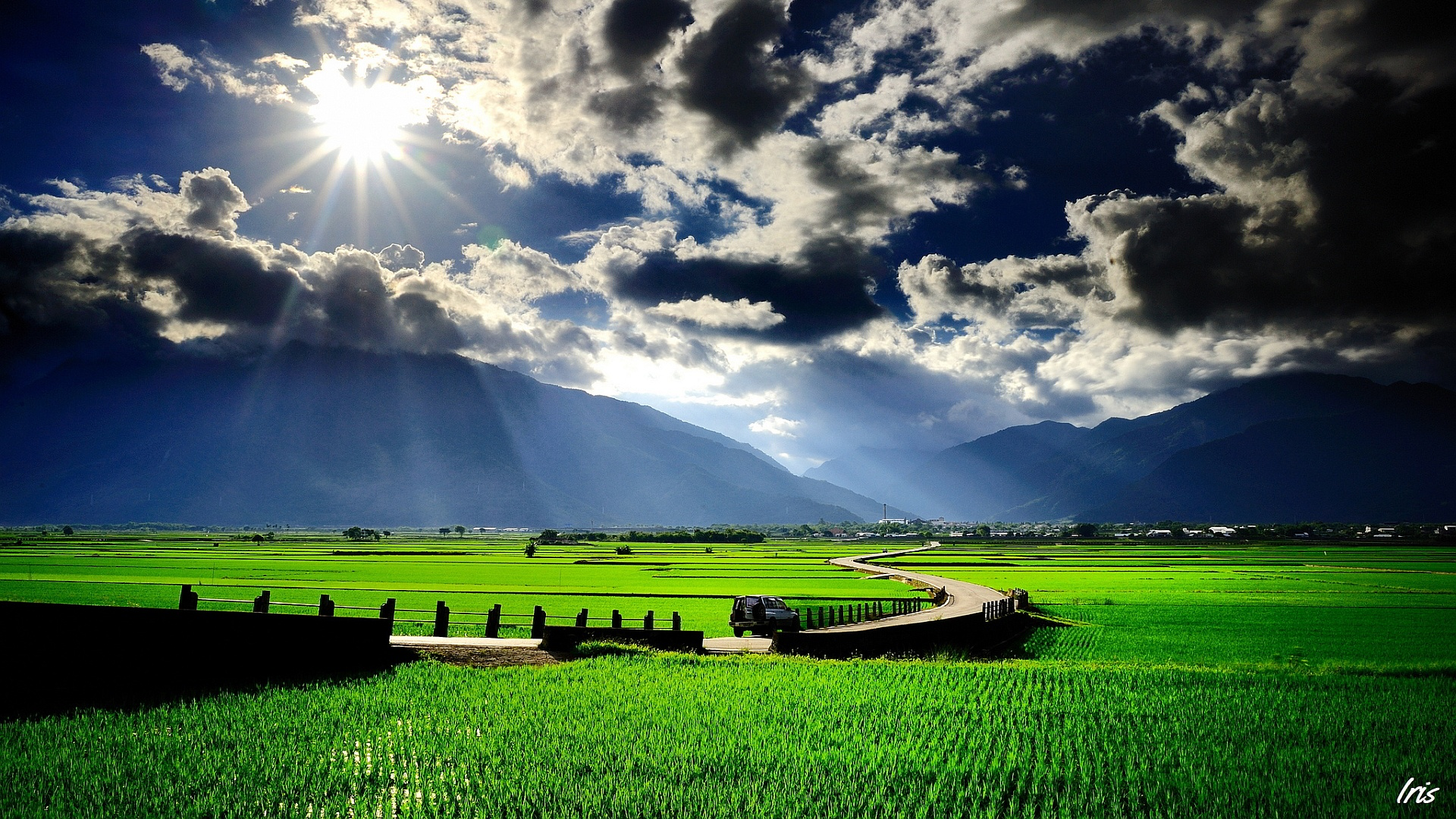 Awesome-Rice-Fields-Wallpaper-Beautiful-