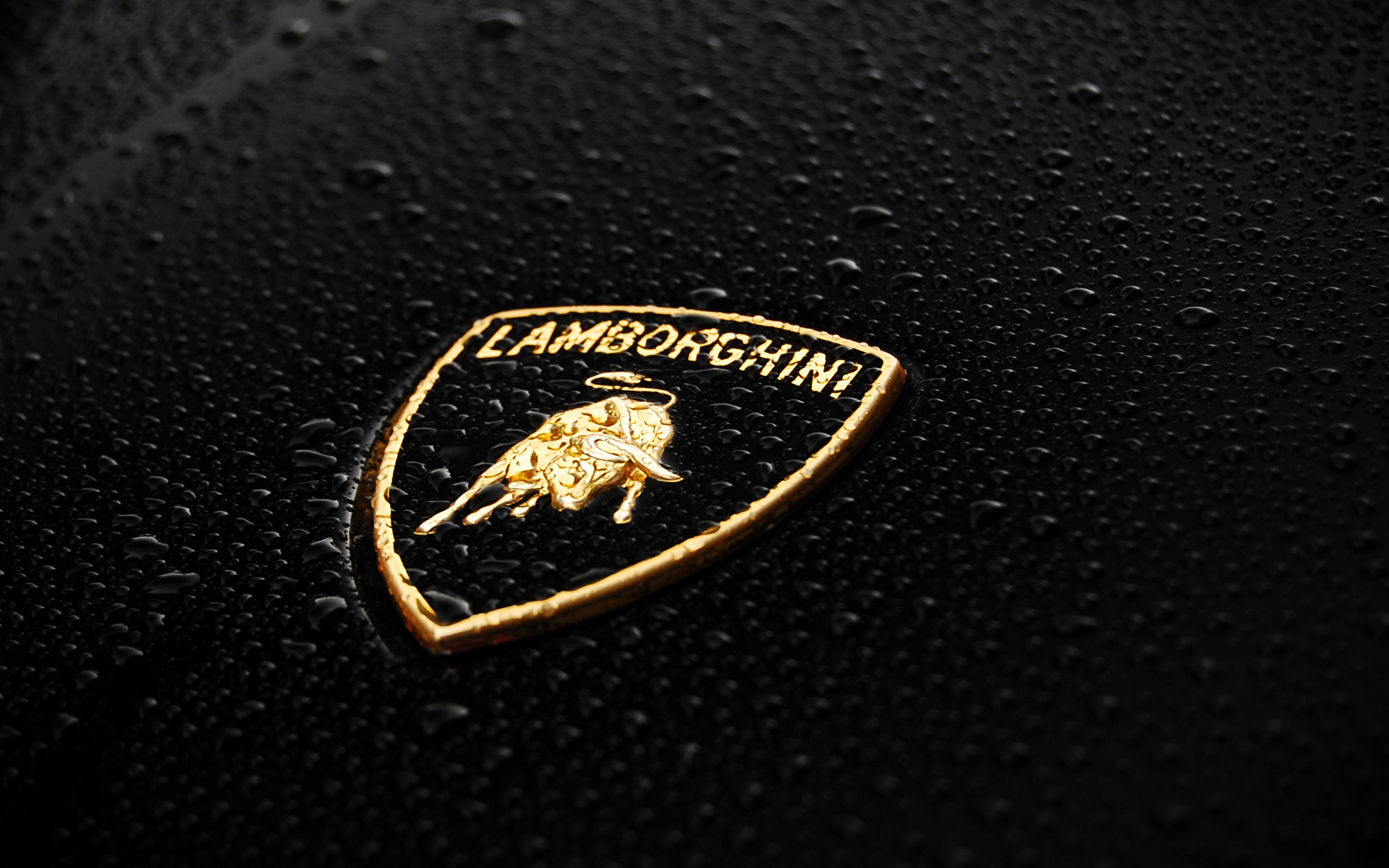 Awesome Lamborghini Logo Water Car Picture Image HD Wallpaper
