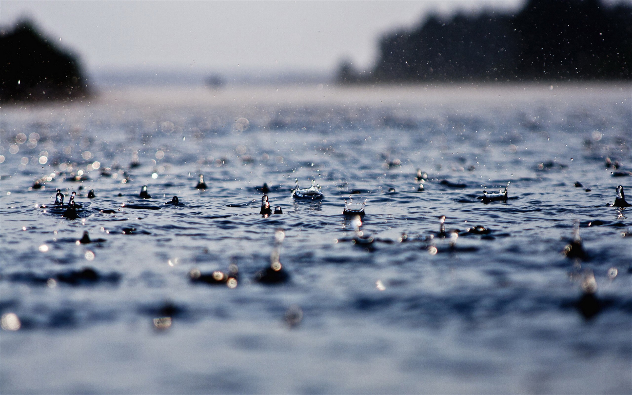 Awesome Raindrops Wallpaper