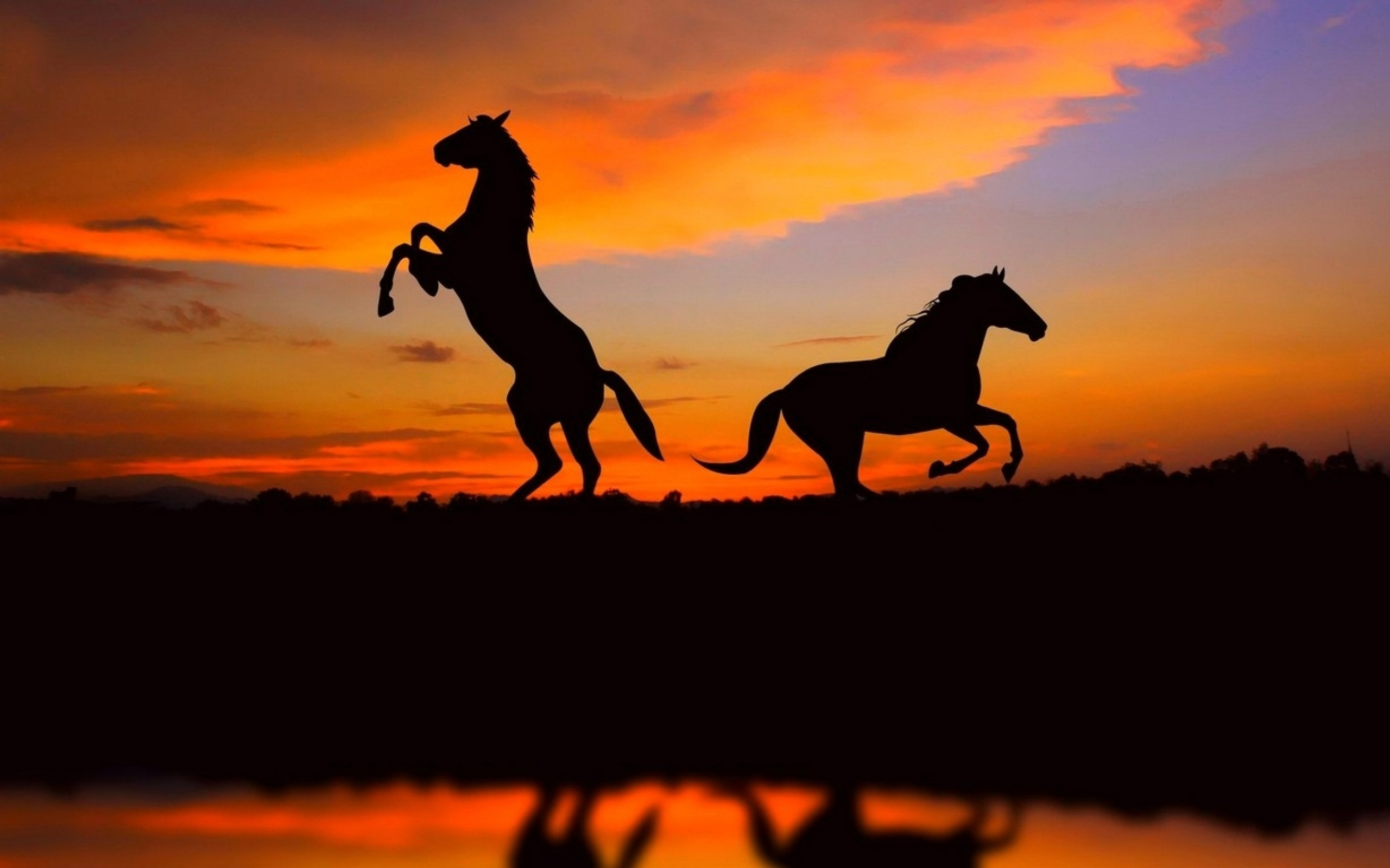 Awesome Sunset Silhouette Wallpaper