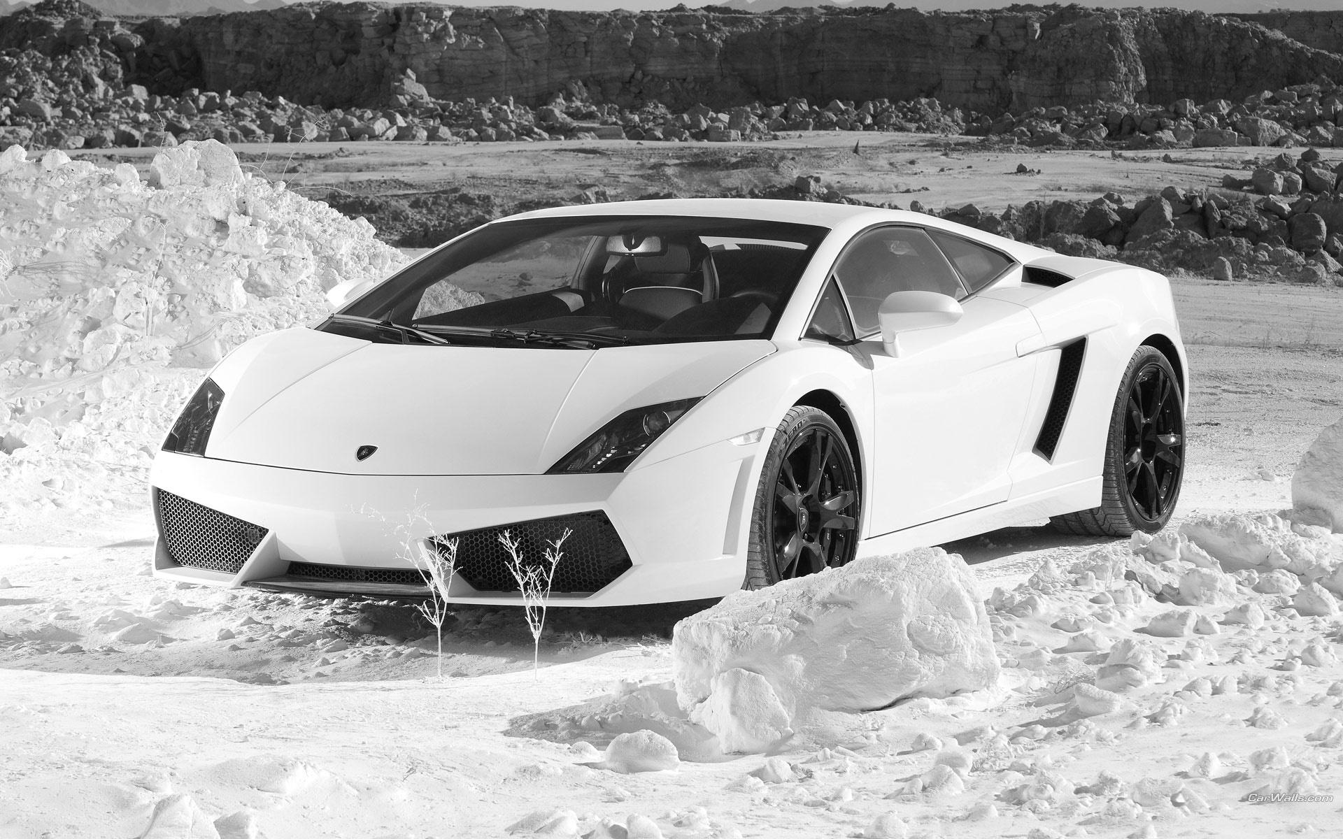 White Lamborghini Wallpaper