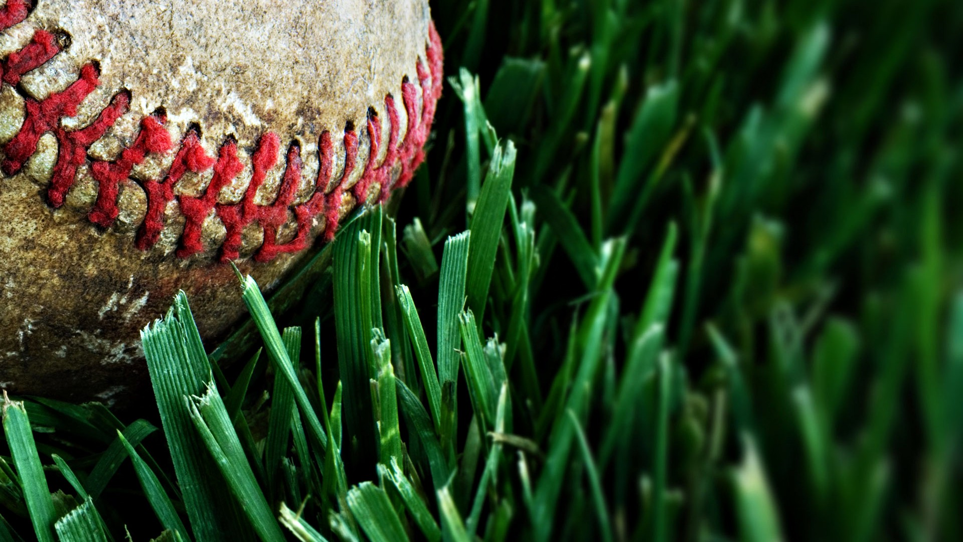 Baseball Macro Wallpaper