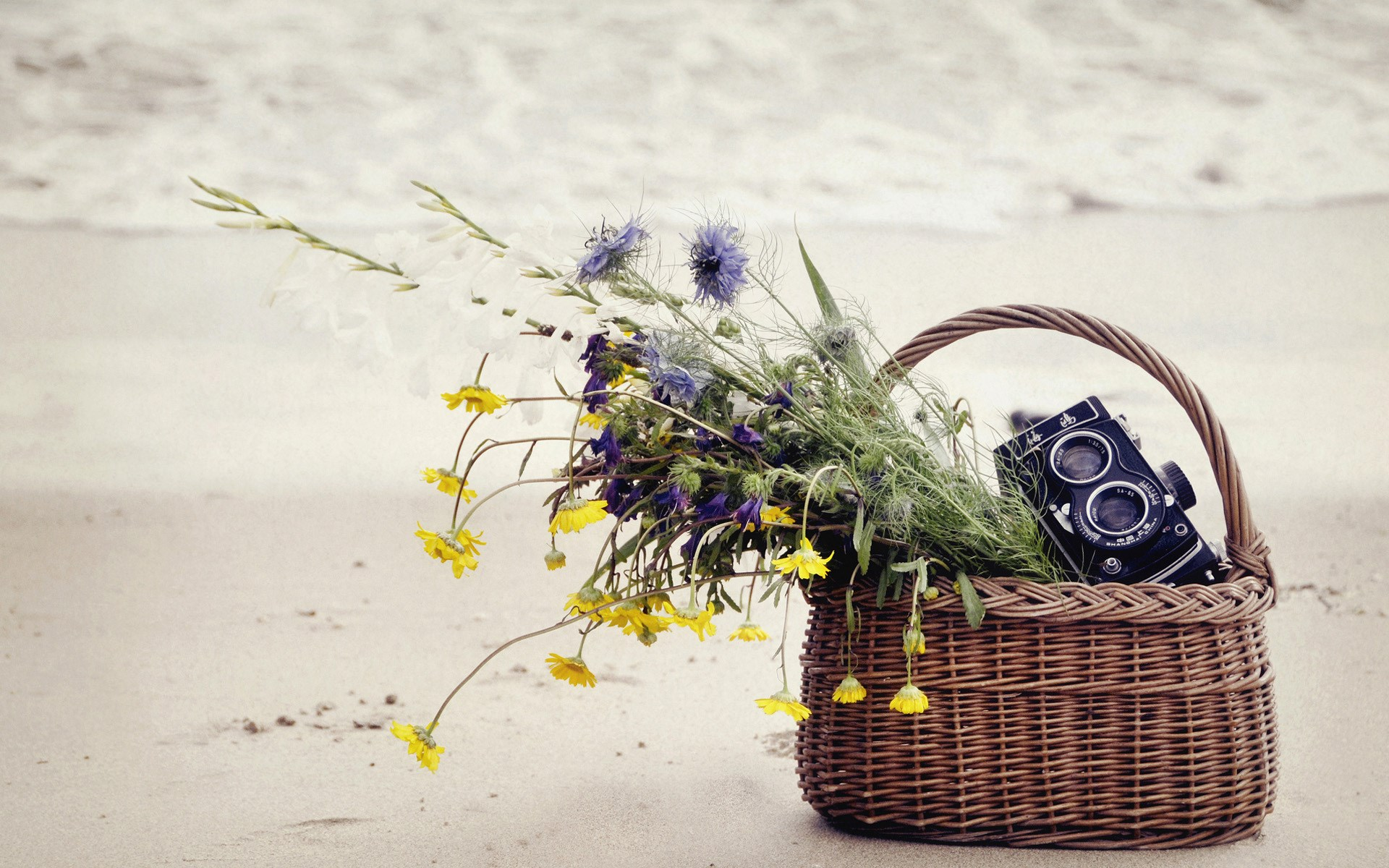 Basket Flowers Camera Sand Sea Beach