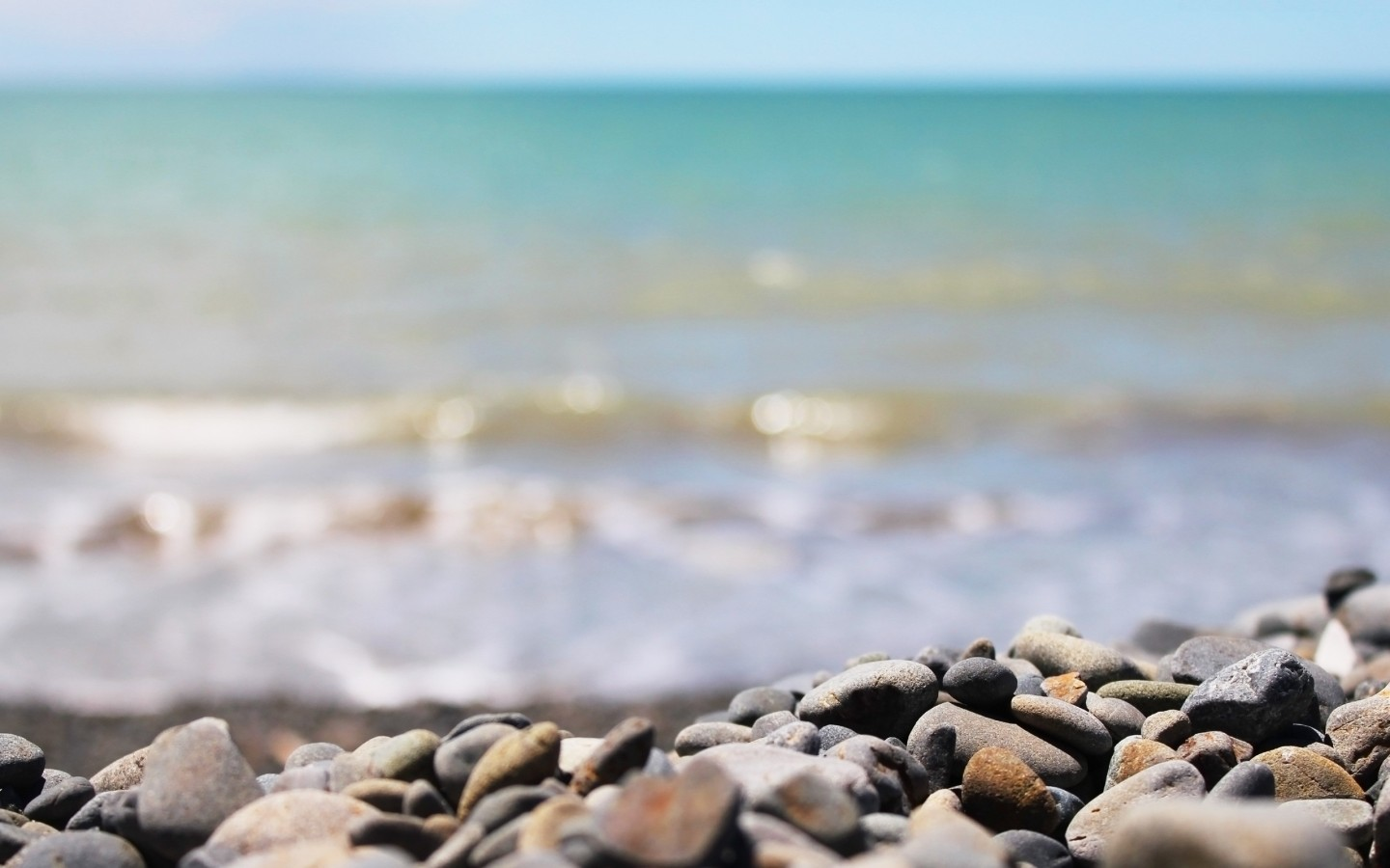 Download Macro Rocks on the Beach Wallpaper : Widescreen : 1152 x 720 | 1280 x 800 ...