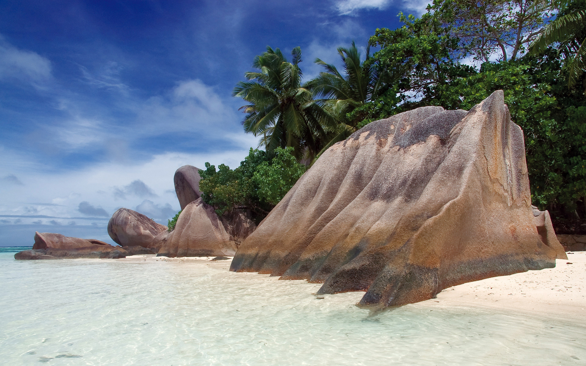 Beach sand rock palms tropical