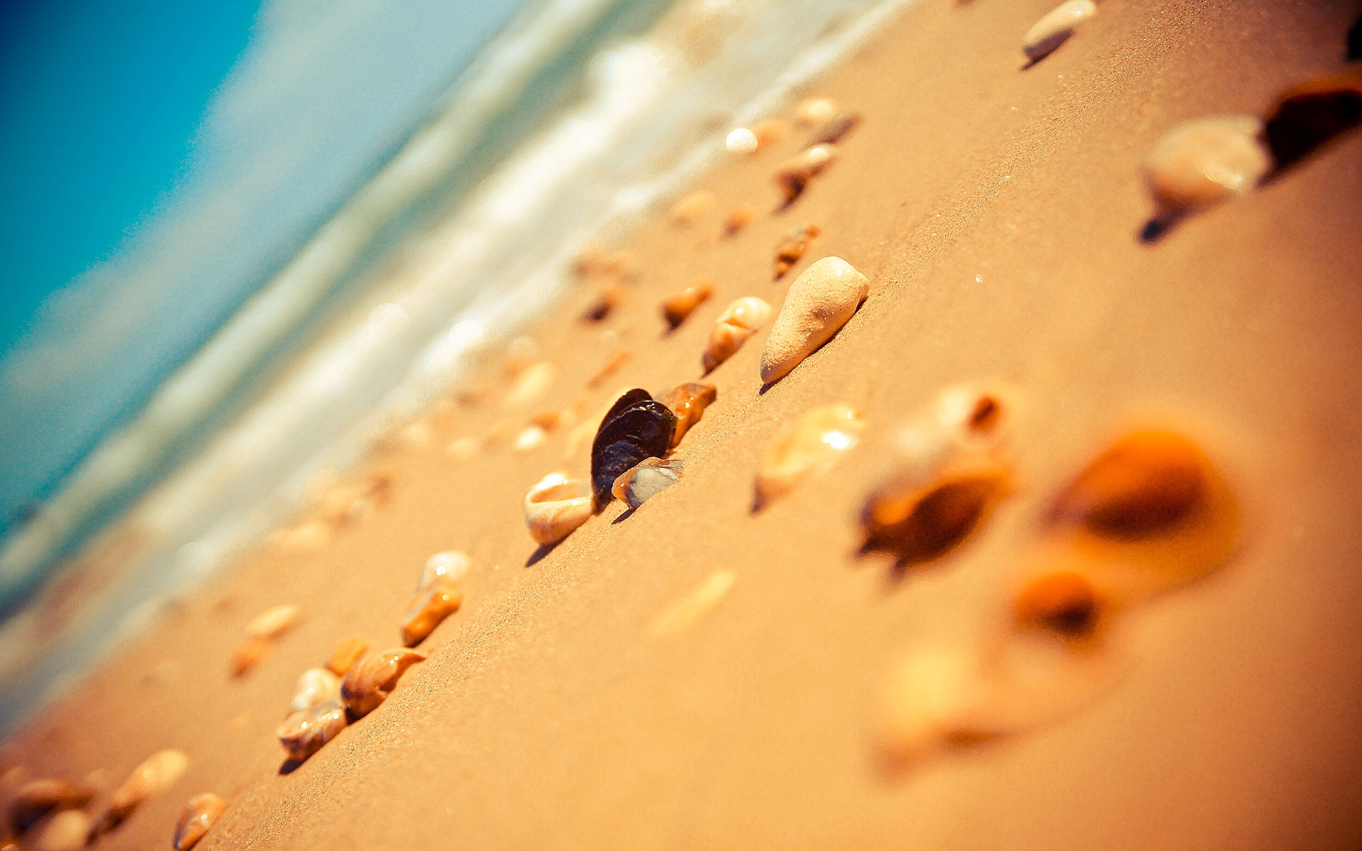 Beach sand stones