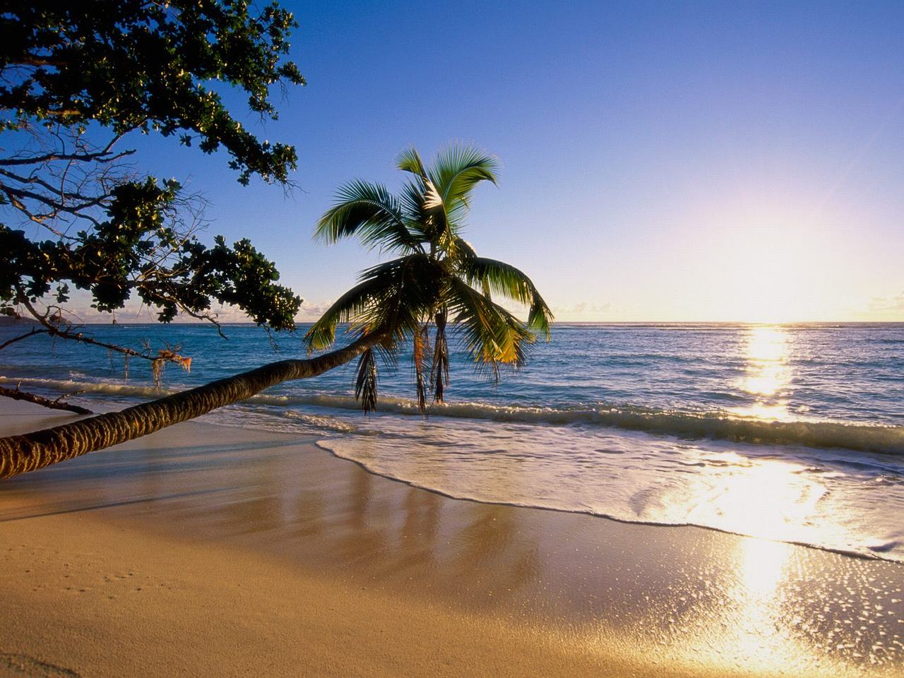 Beach Scenery Images 6 HD Wallpapers