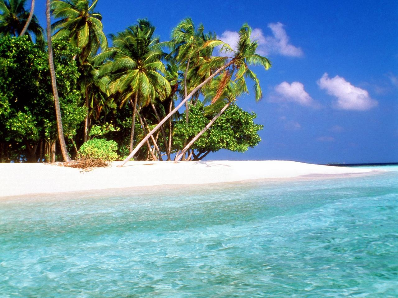 tropical island beach scenery ...
