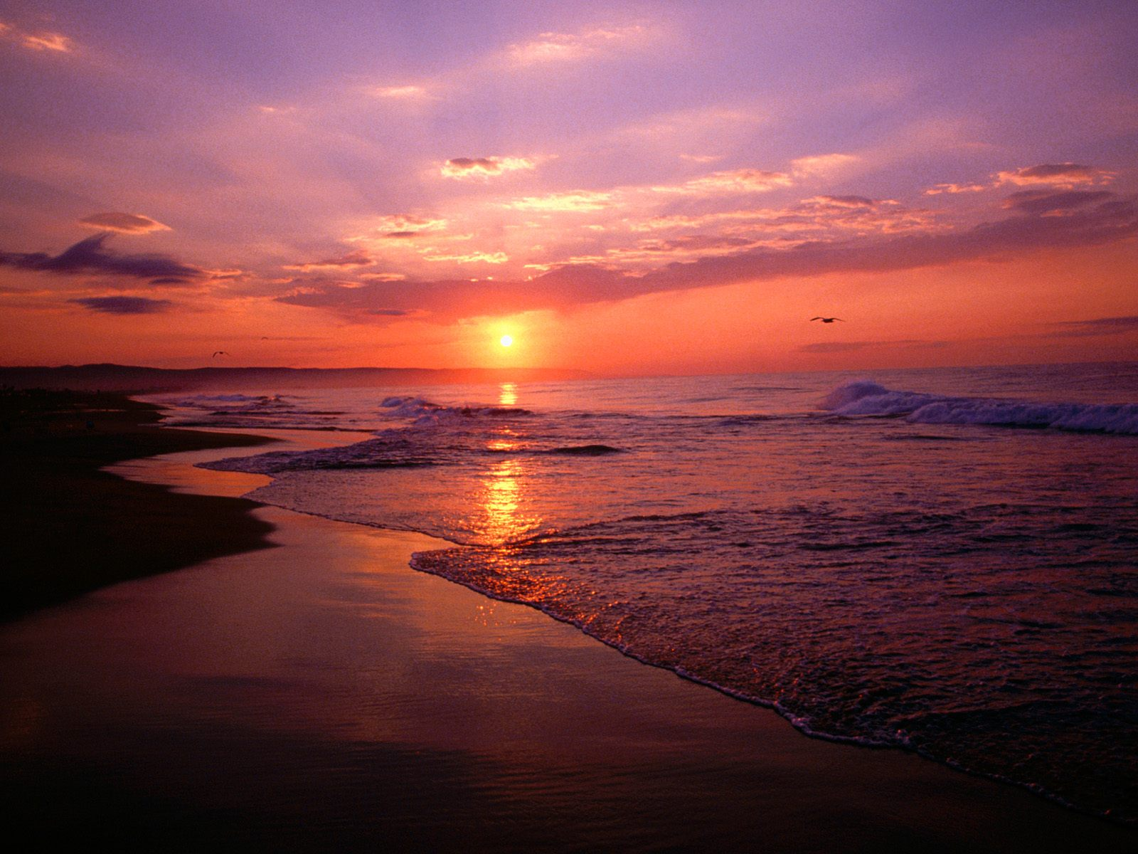 Tropical Beach Sunrise Hd Cool 7 HD Wallpapers