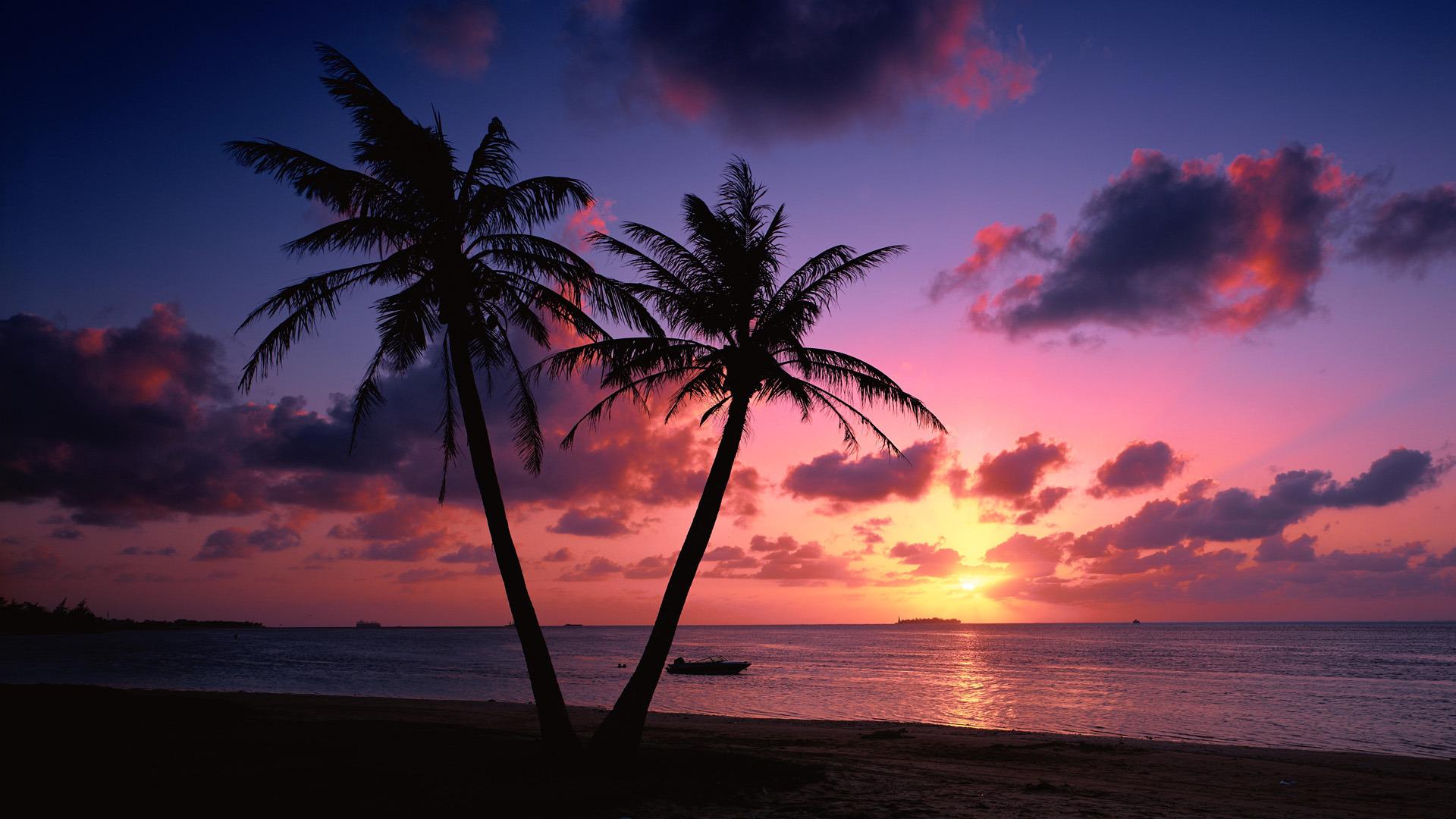 Beach Sunset Landscape